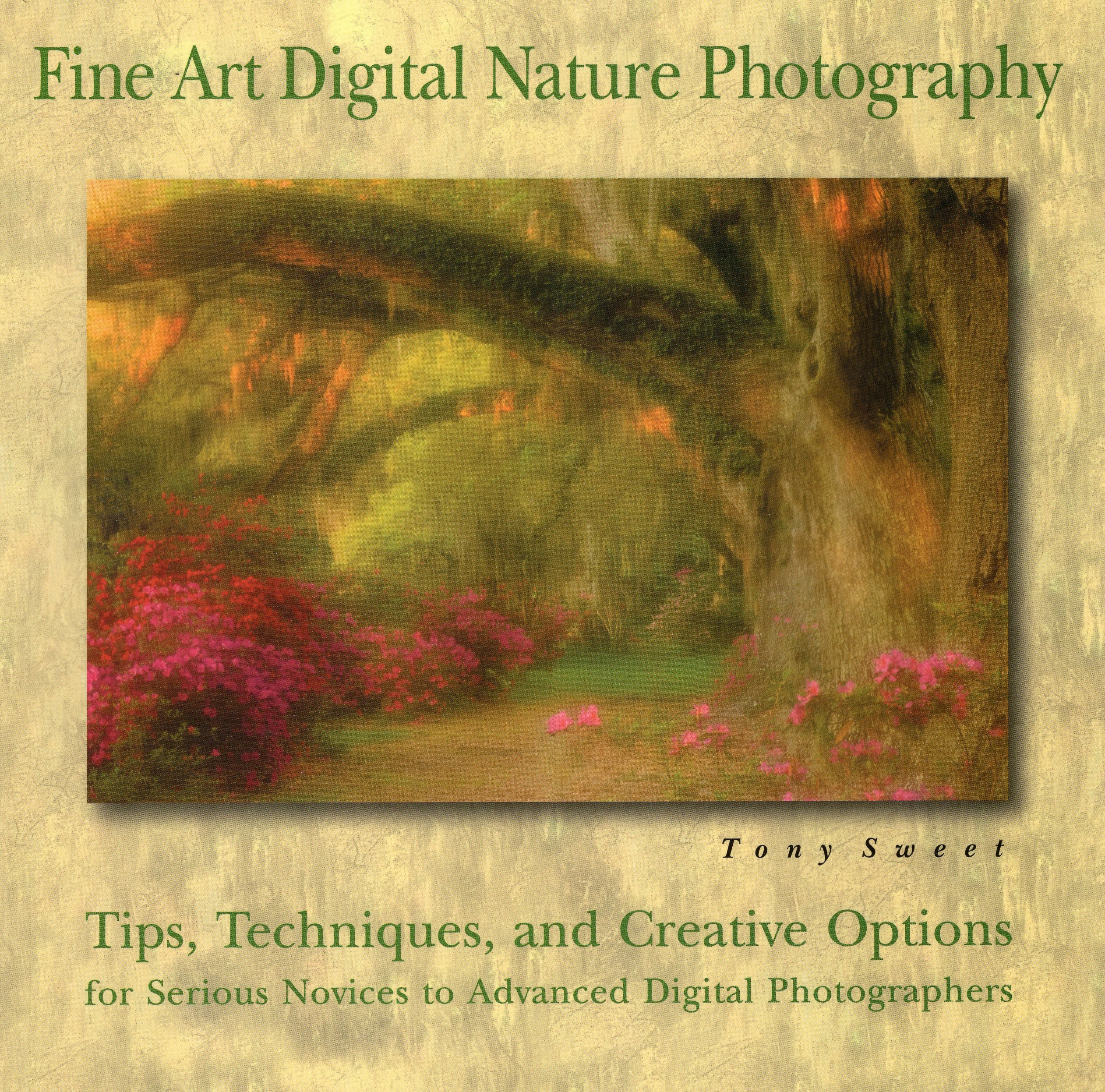 Download Fine Art Digital Nature Photography PDF