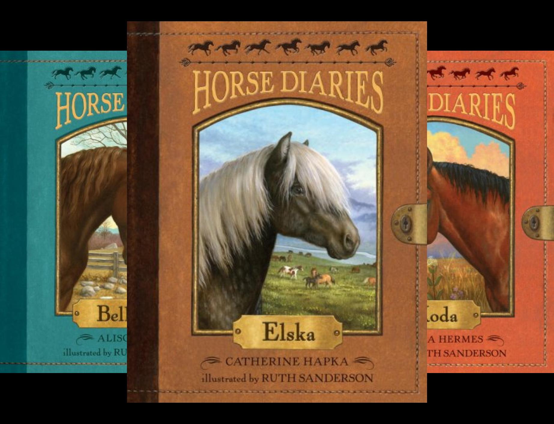 horse-diaries-series-15-book-series