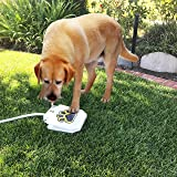 Outdoor Dog Water Fountain - Step On Dog Water System - Our Water Dispenser For Dogs Provides A Safe Self Watering Doggie Fountain For Your Pets - Never Leave Your Dog Without Fresh Water Again