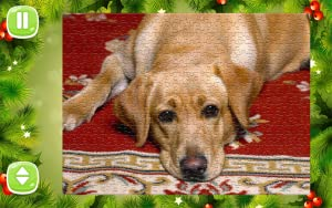 Jigsaw Puzzles Free Game from Jigsaw World LLC