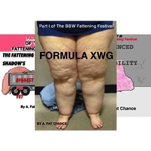 The SSBBW Fattening Festival (4 Book Series)
