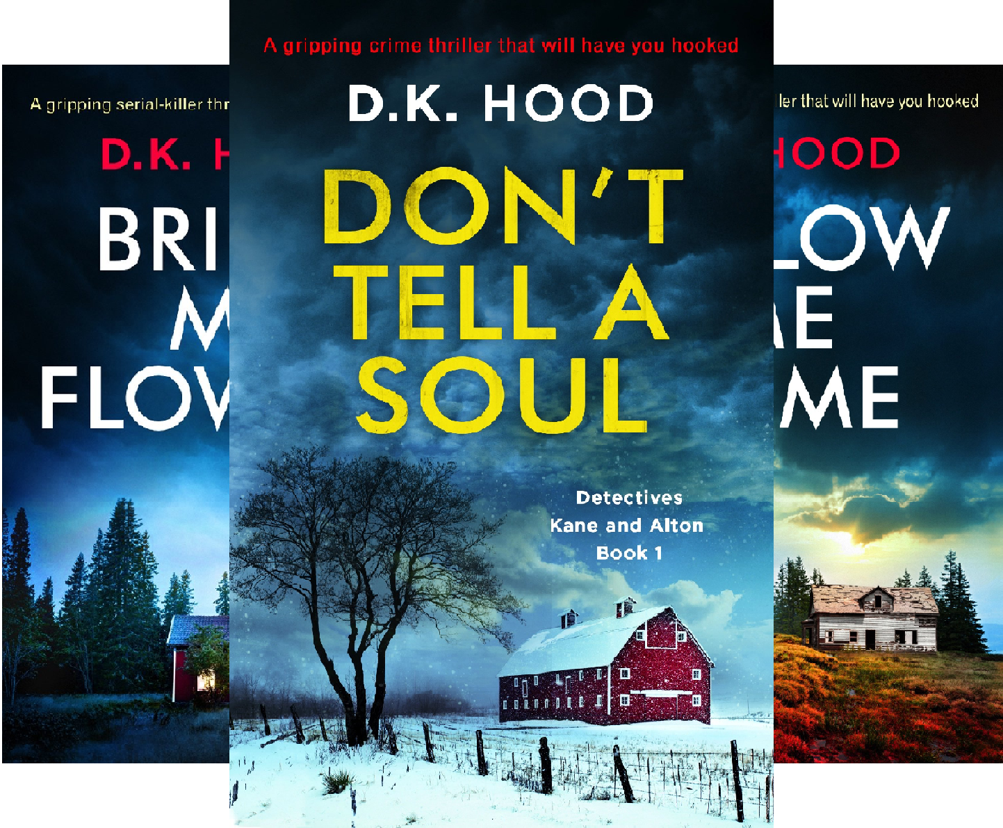 Detectives Kane and Alton (5 Book Series)