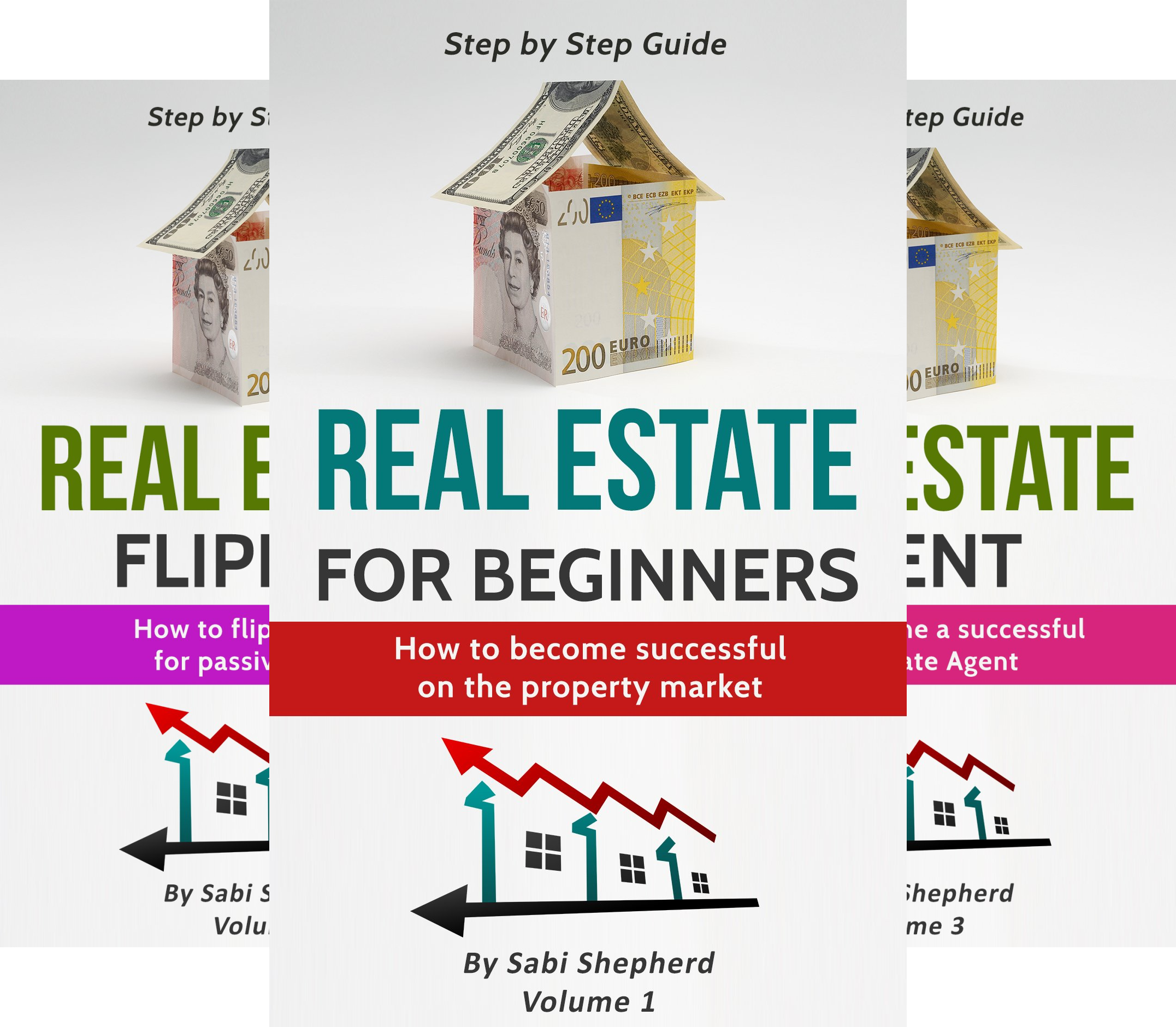 Real estate Investing (3 Book Series)