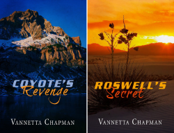 Defending America (2 Book Series) by  Vannetta Chapman