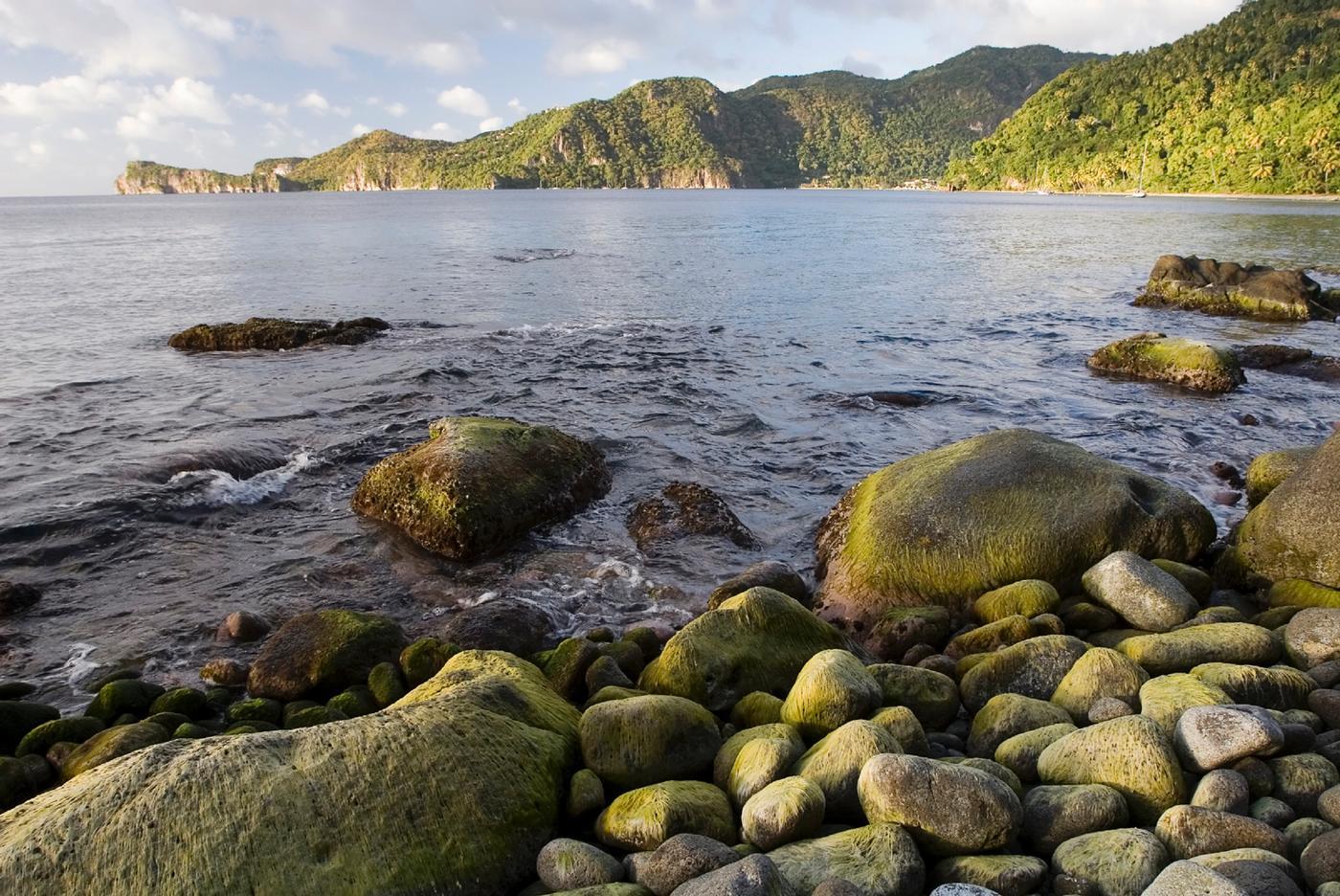 St Lucia Adventure Tours: Martinique Splendor