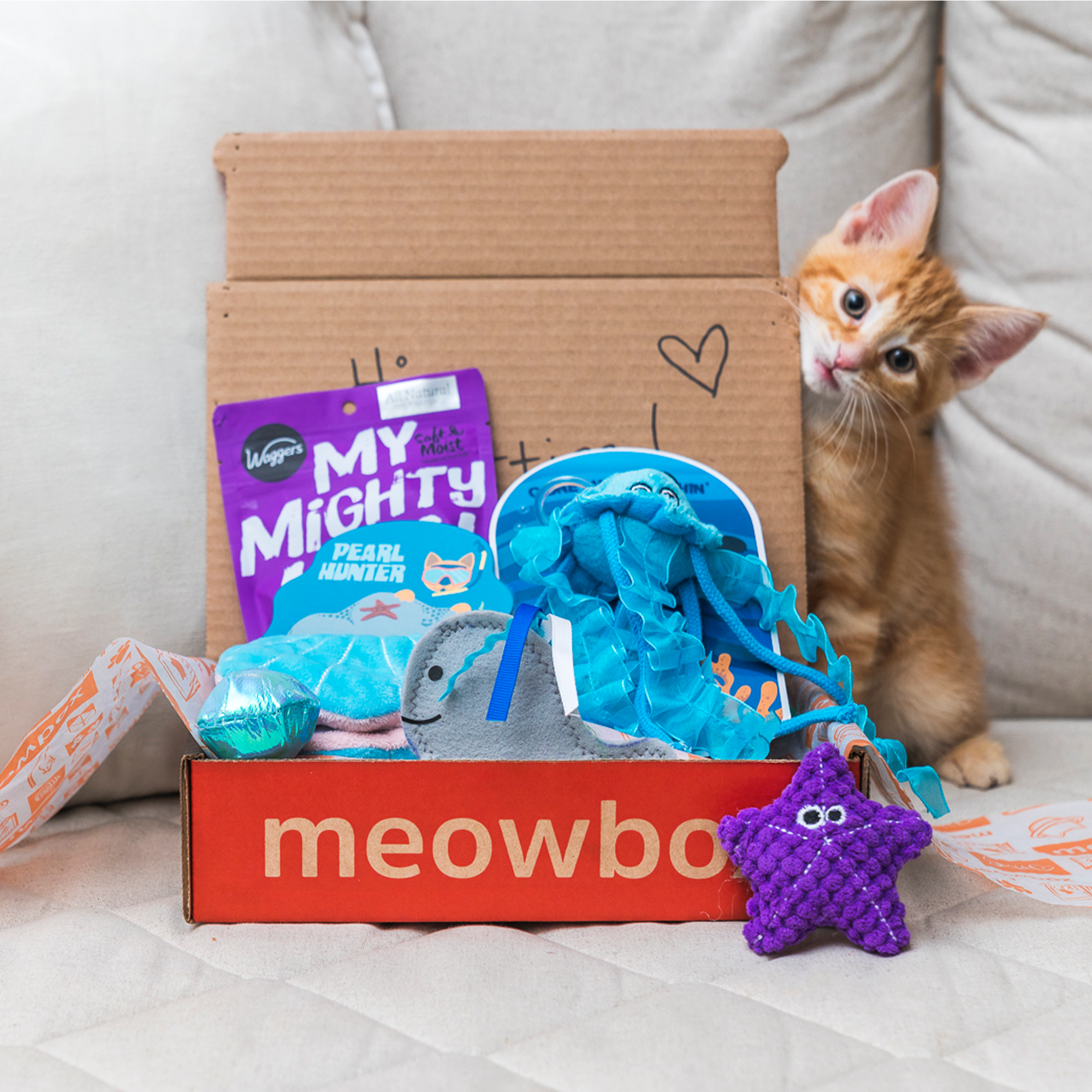 meowbox - the subscription box for cats (Best Cat Subscription Box)