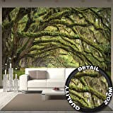 Fotomurale Natura Quadro Decorazione Bosco Paesaggio Estate Foresta Muschio Mistico Oak Quercia Viale Quercus Bosco delle fiabe Parco Rami I Fotomurales by GREAT ART (336 x 238 cm)