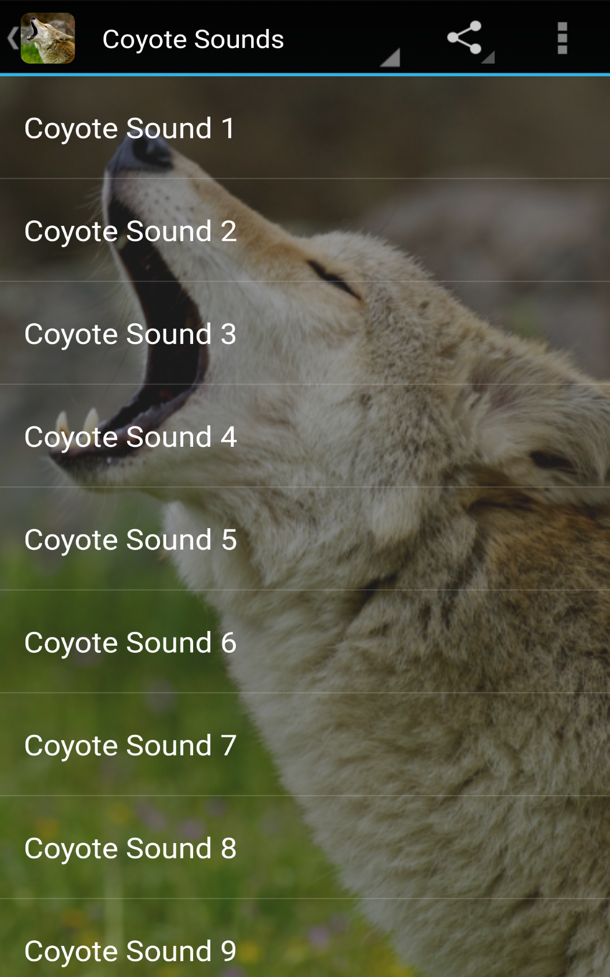 Amazon.com: Coyote Sounds: Appstore for Android