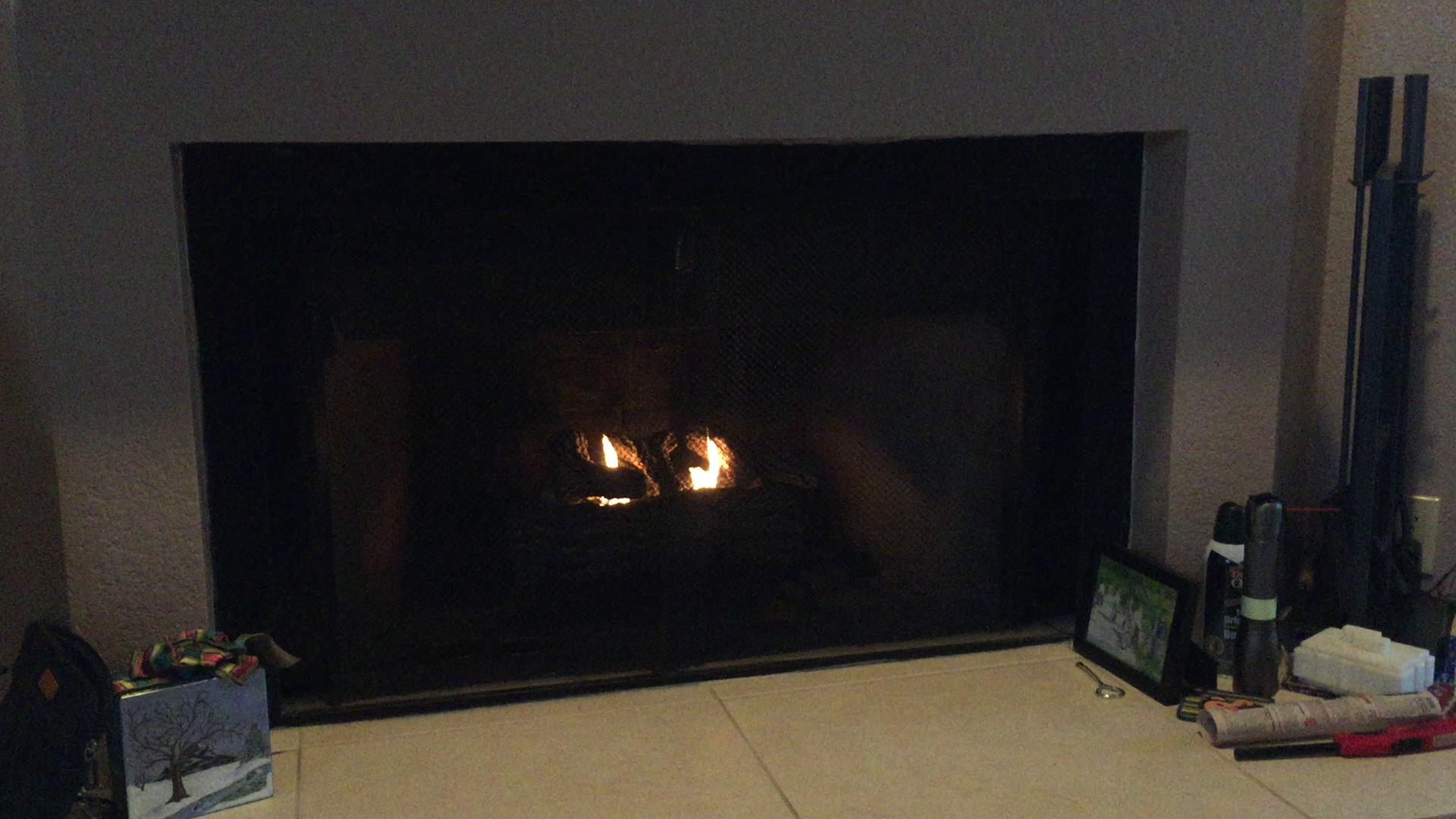 amazon com real flame 18