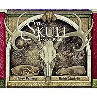 Alphabet Books: The Skull (Pb) (All Ages)
