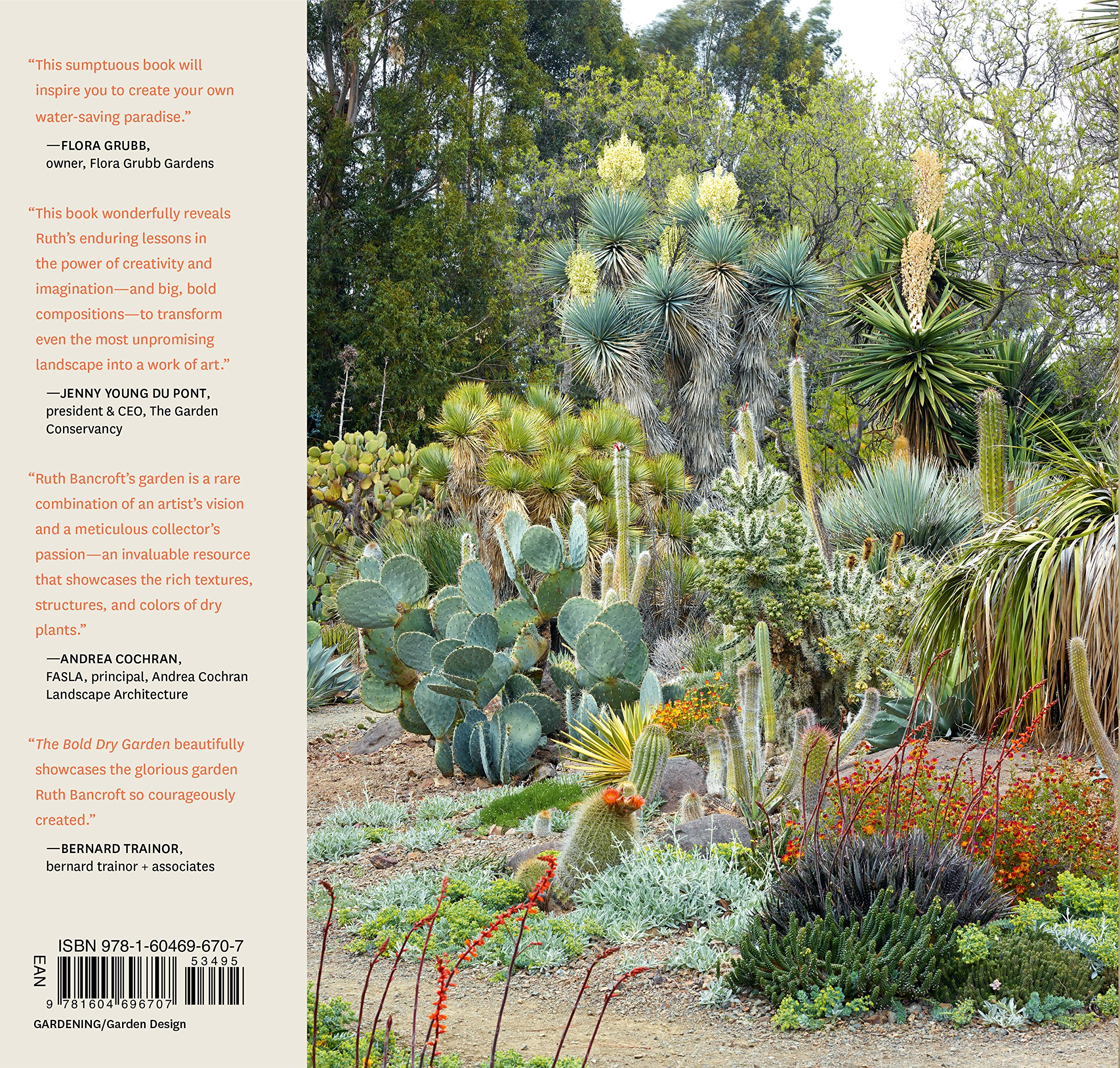 The Bold Dry Garden Lessons From The Ruth Bancroft Garden Johanna