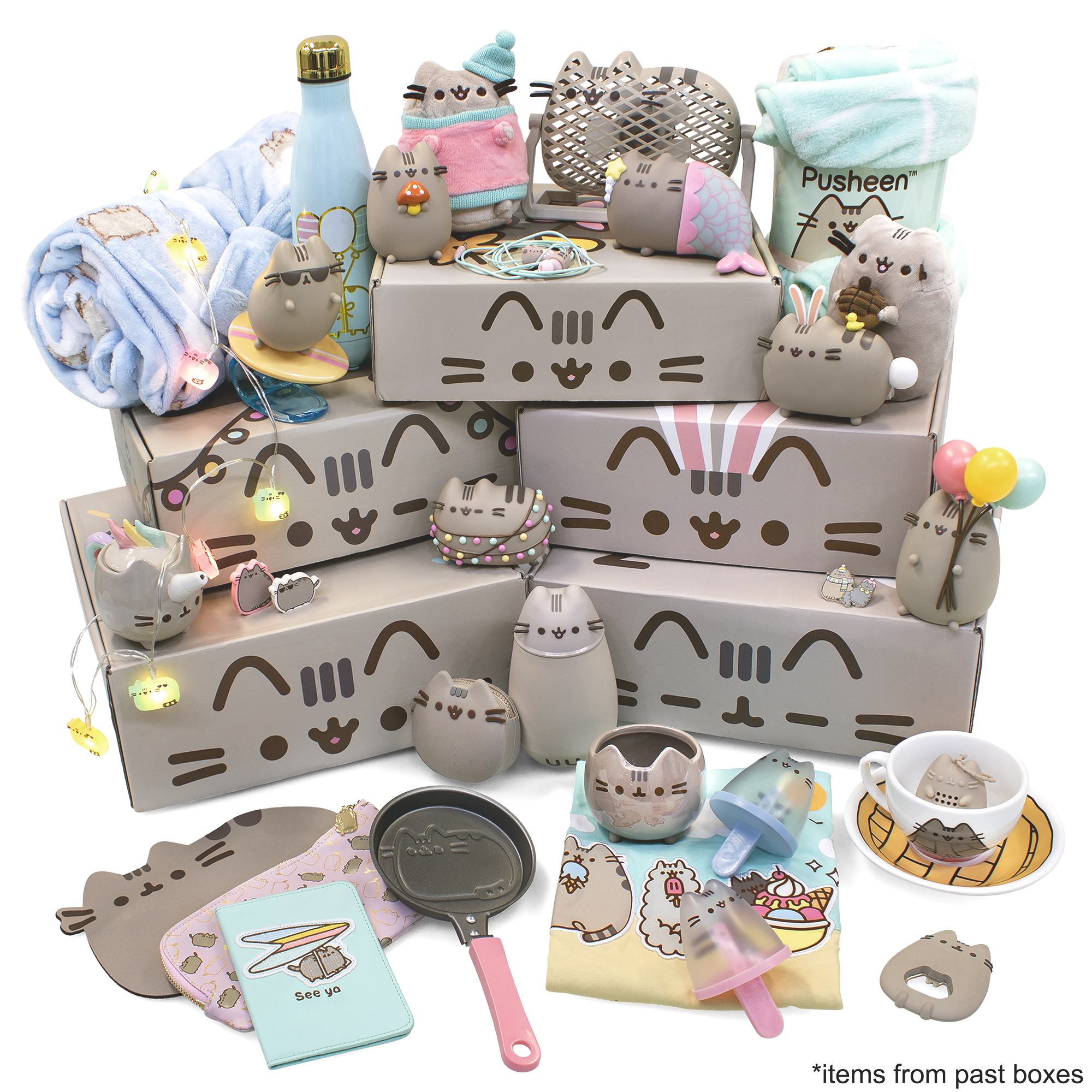 Pusheen Box - Officially Licensed Pusheen the Cat Mystery Subscription Box (Best Cat Subscription Box)