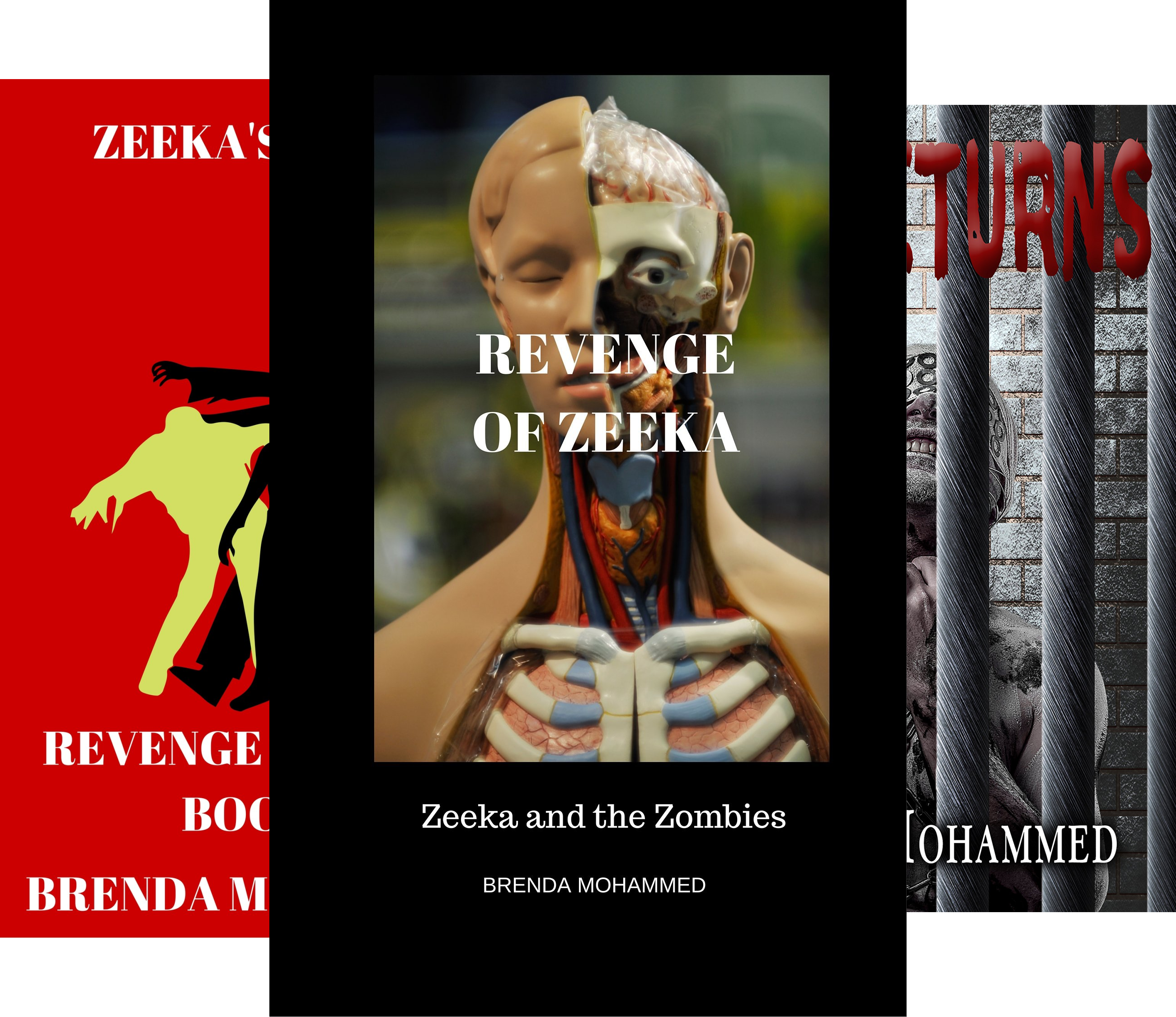 Revenge of Zeeka (5 Book Series)
