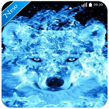 Amazoncom Ice Fire Wolf Wallpaper New Image Locker Phone