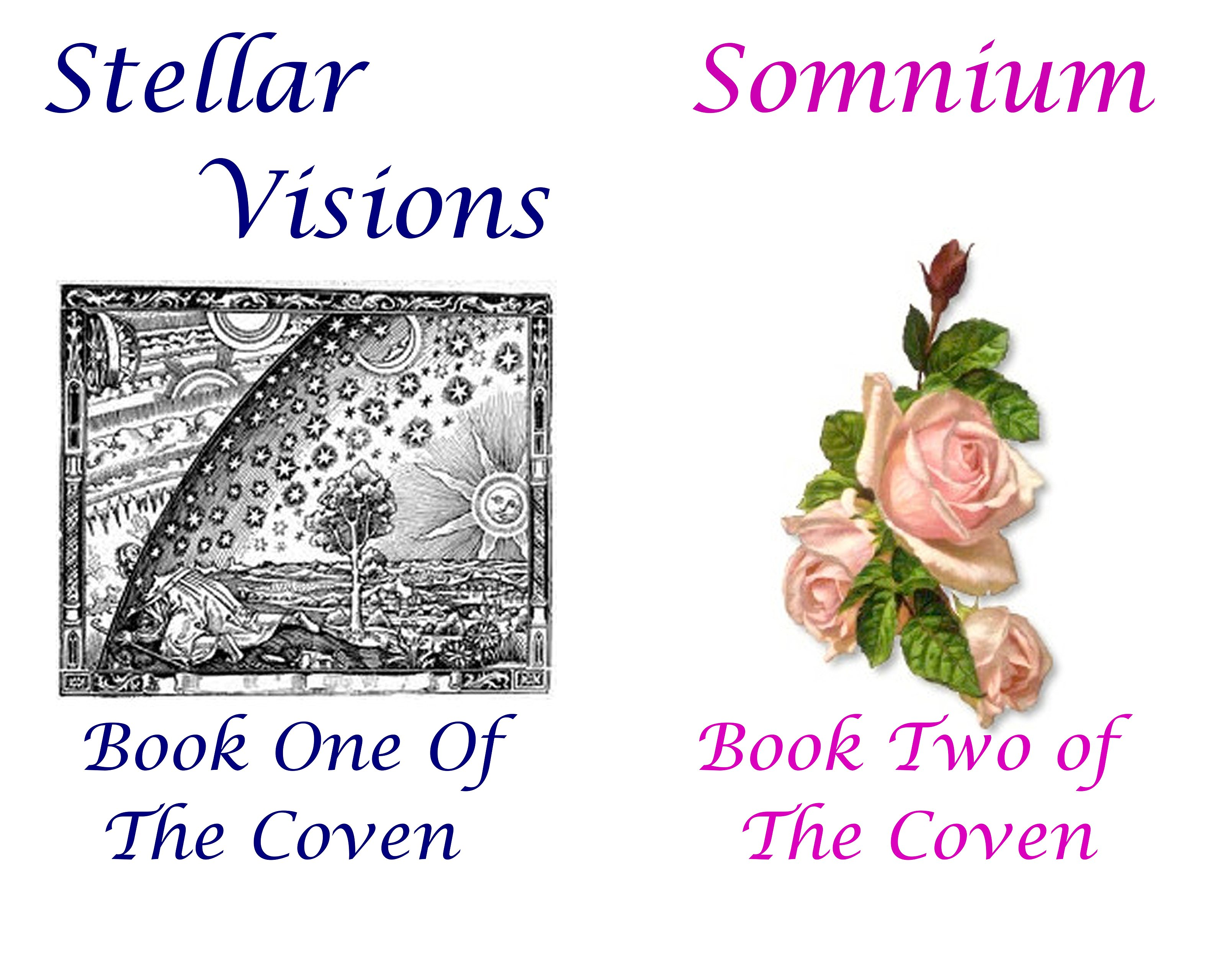 The Coven (2 Book Series)
