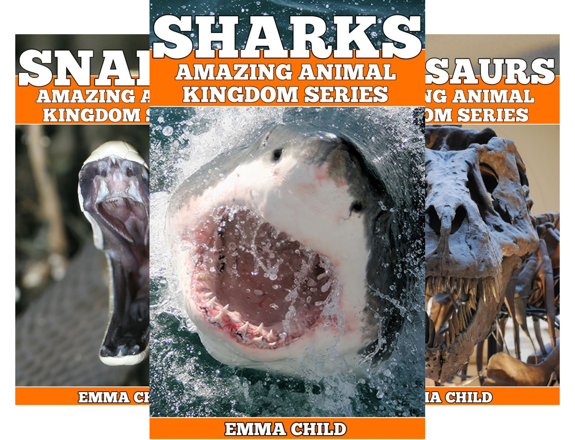 Amazing Animal Kingdom (18 Book Series) by  (Image #2)