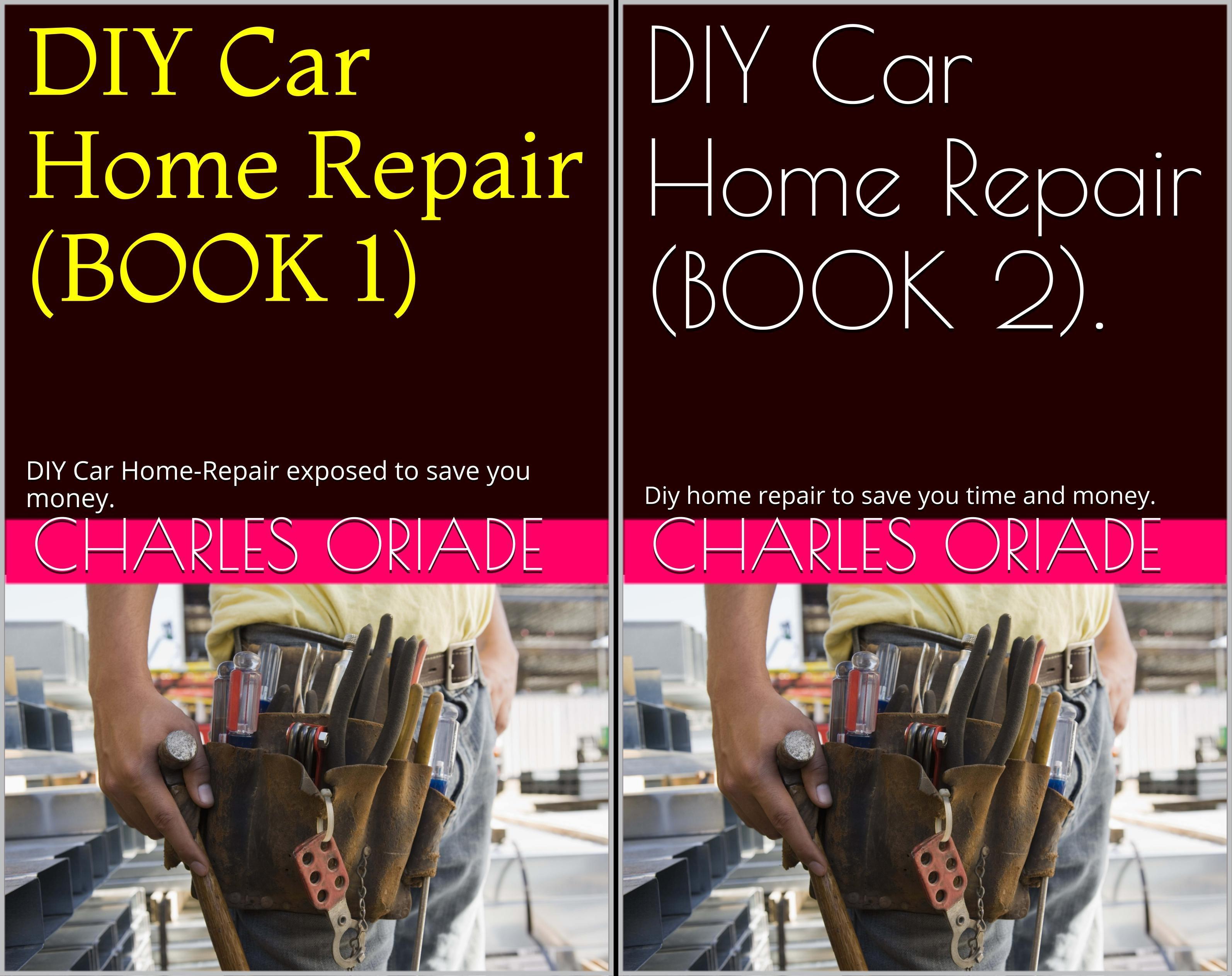 DIY Car Home Repair EXPOSED (2 Book Series)