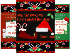 Willy the Kinky Elf & His Bad-Ass Reindeer (4 Book Series) by  Candi Kay