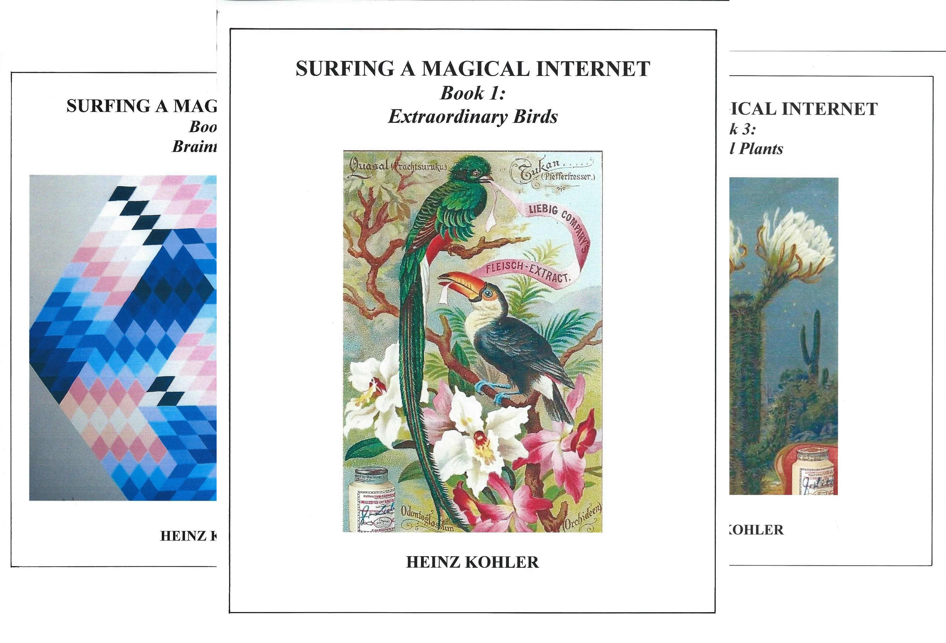 SURFING A MAGICAL INTERNET (18 Book Series)