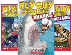 Fly Guy Presents (4 Book Series) by  Tedd Arnold