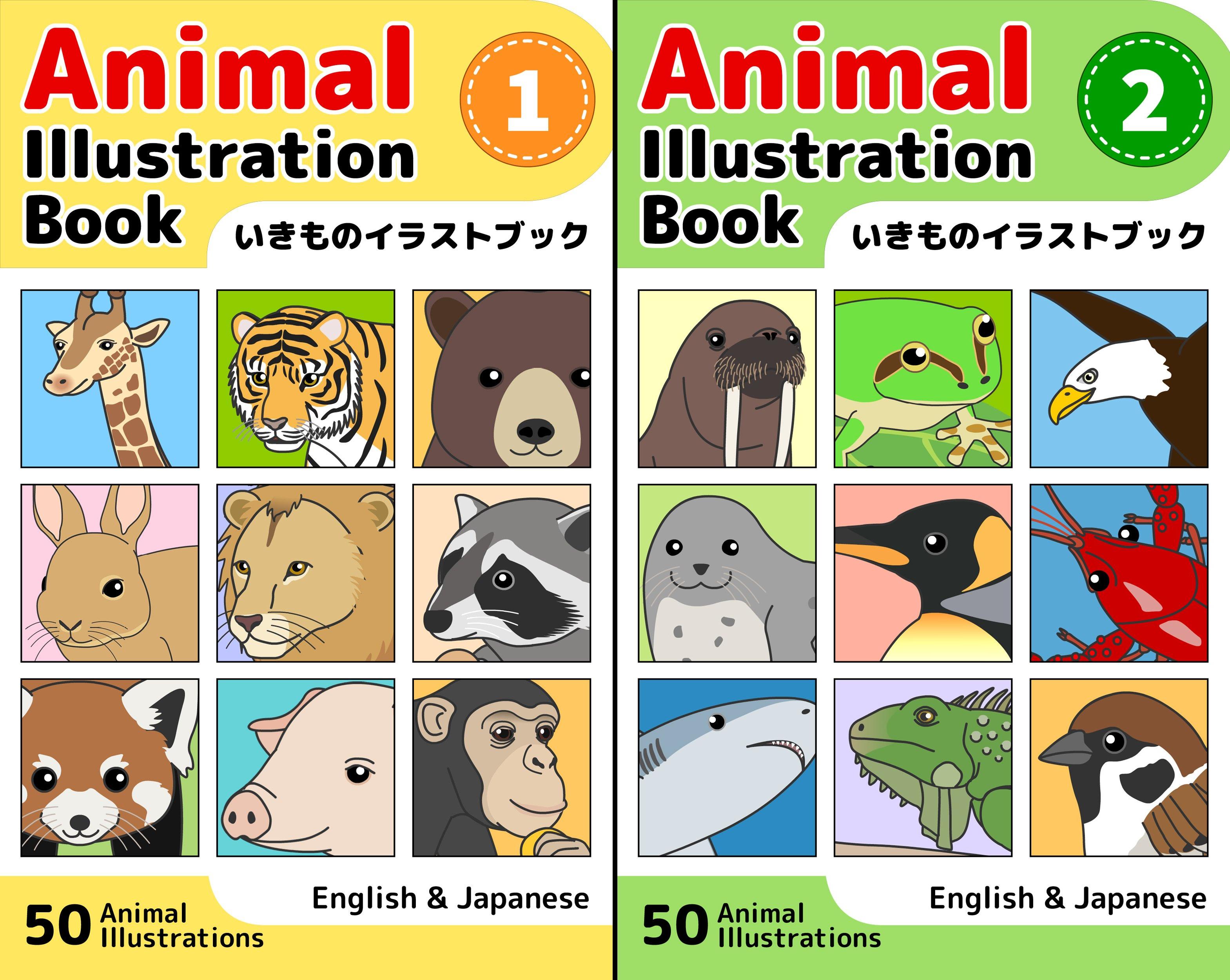 Animal Illustration Book (2 Book Series)