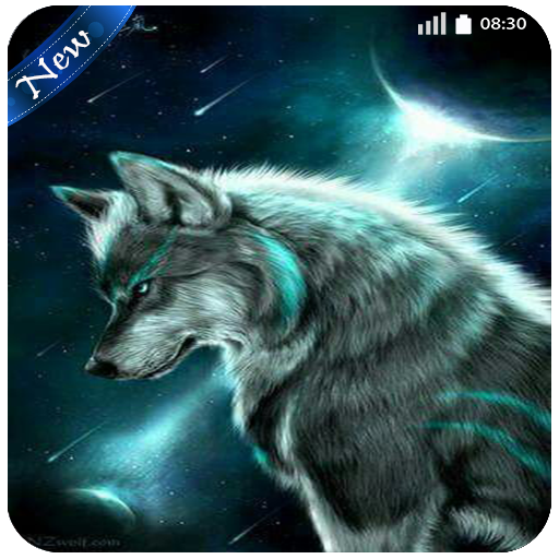 Wolf Wallpaper 4K - New Images For phone