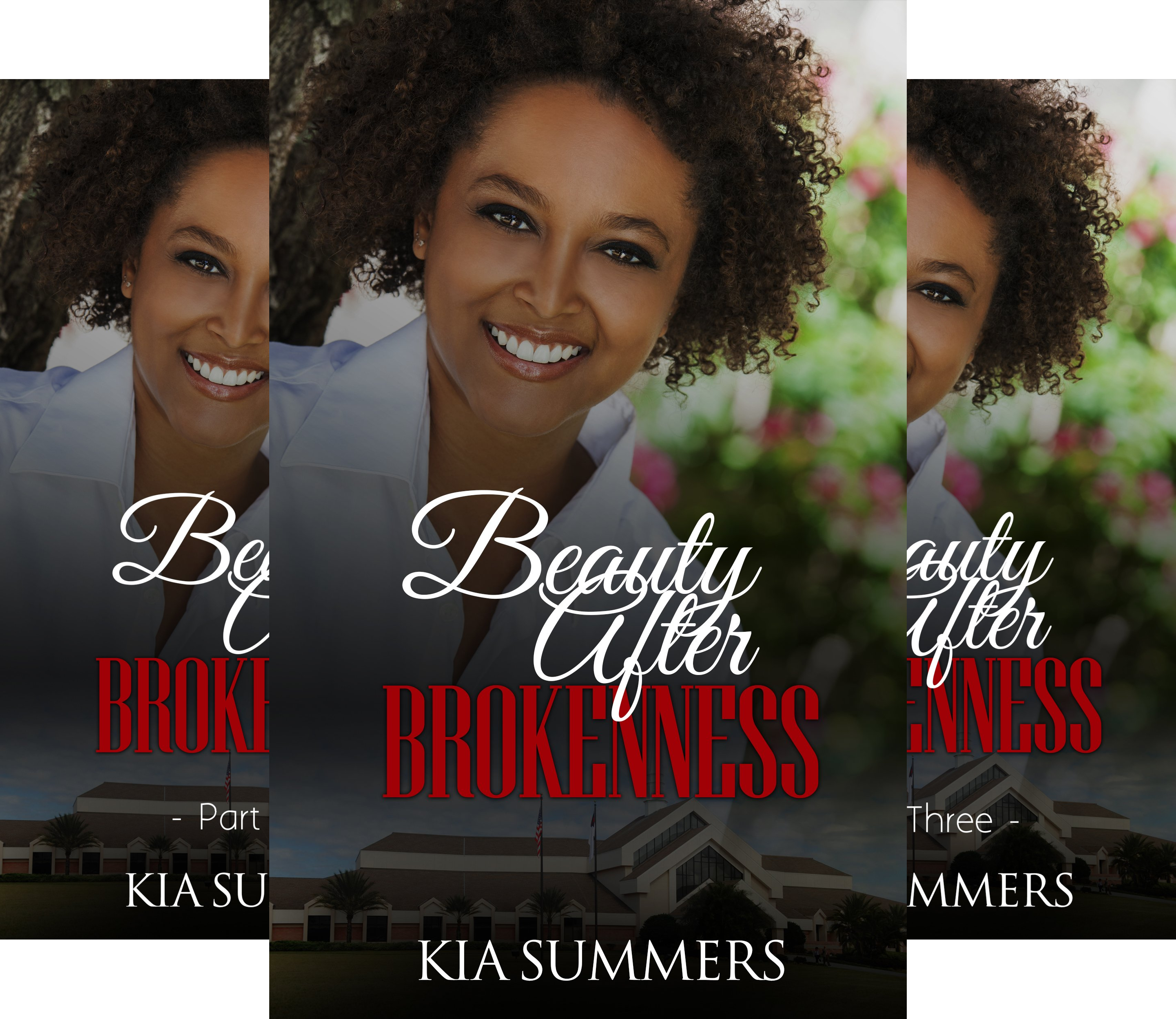 Books : Ashes to Beauty Series (4 Book Series)