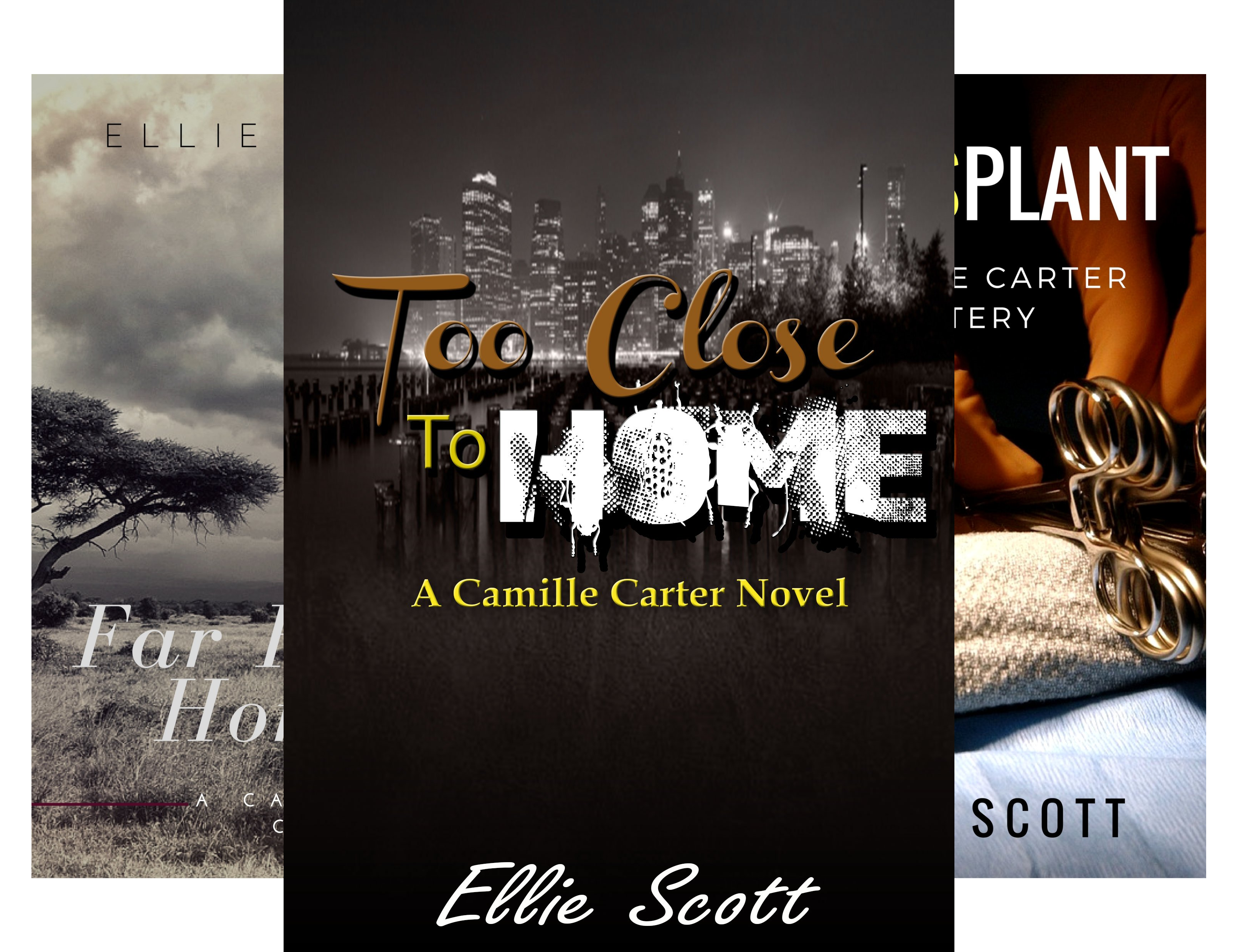 Camille Carter Mystery (5 Book Series)