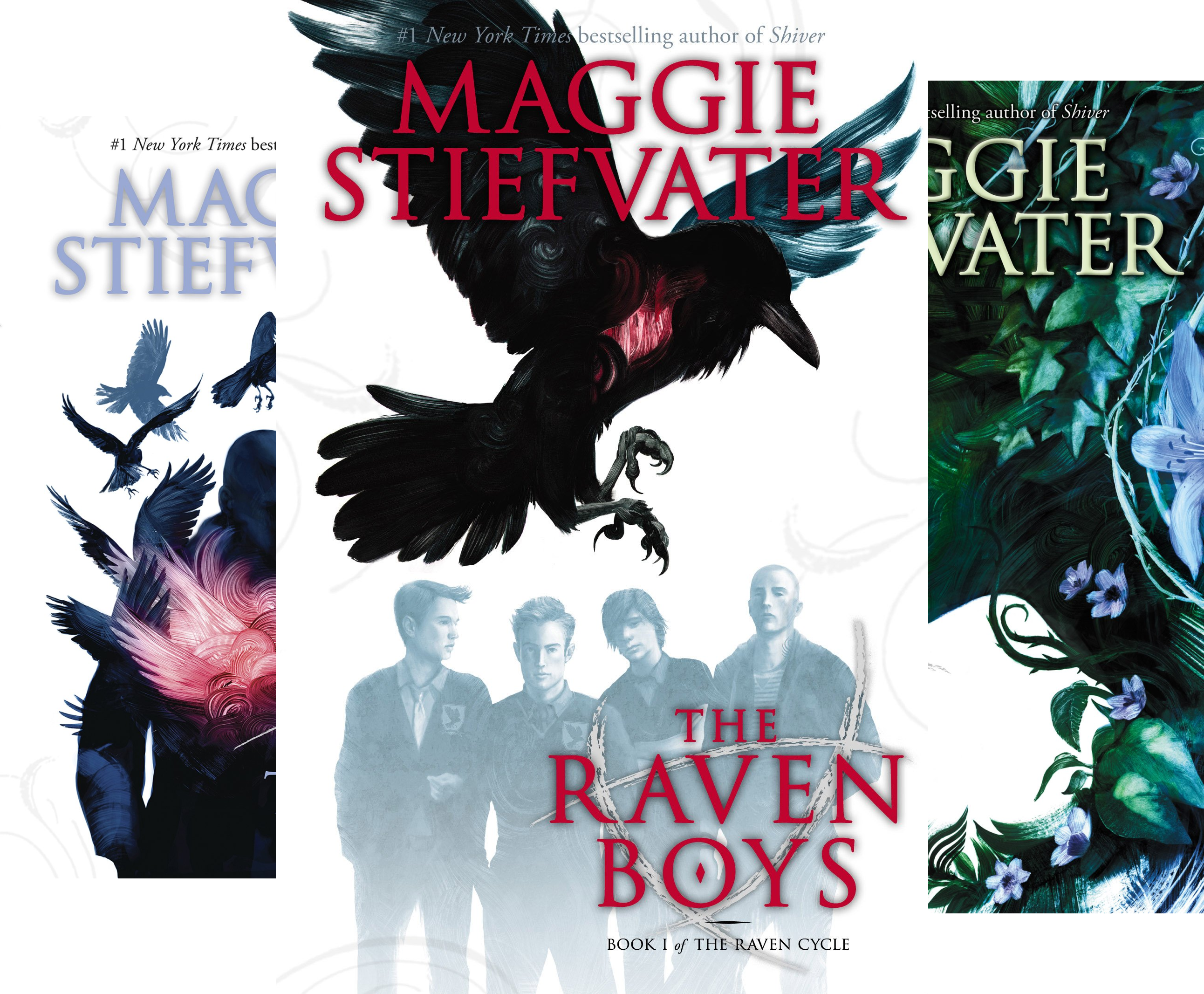 The Raven Cycle (4 Book Series) (Raven Cycle Maggie compare prices)