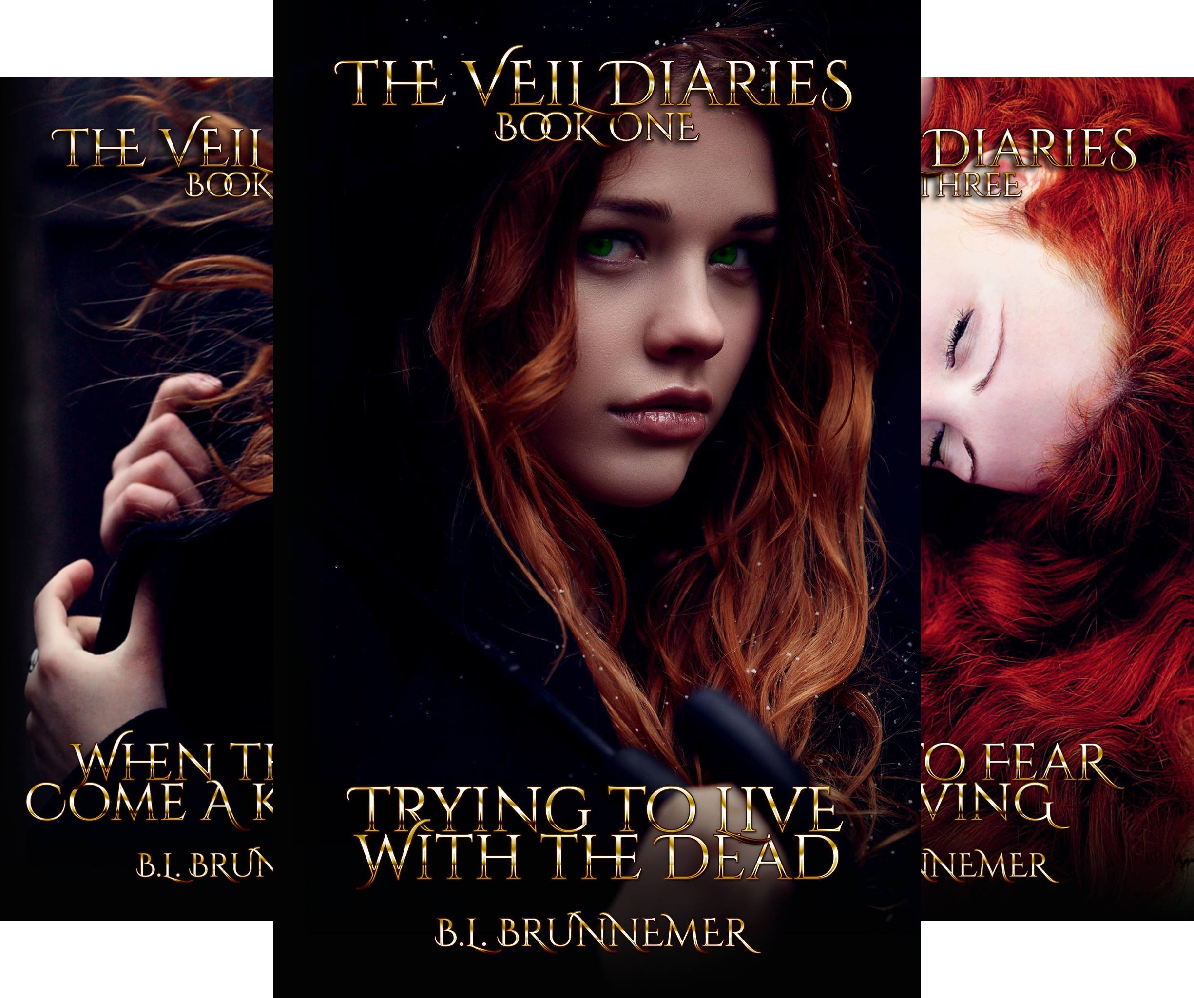 The Veil Diaries (4 Book Series)