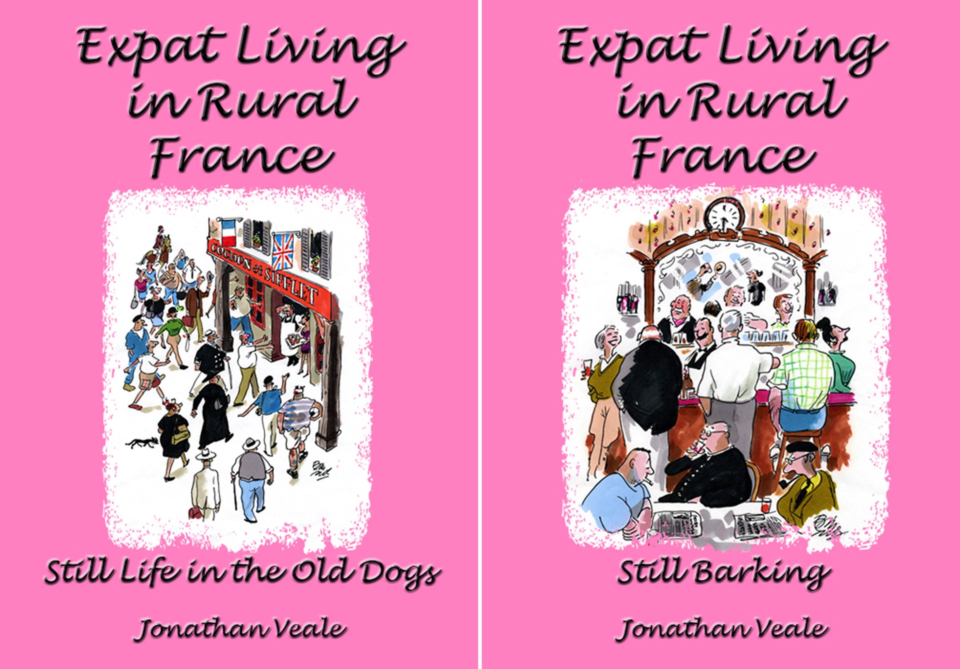 Expat Living in Rural France (2 Book Series)