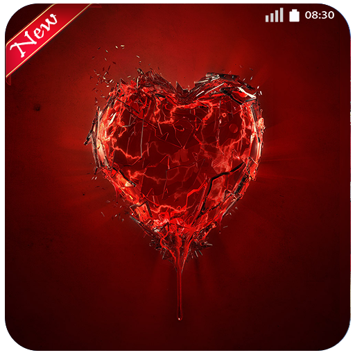Valentines Day My Love Wallpaper Image Hight Quality Phone