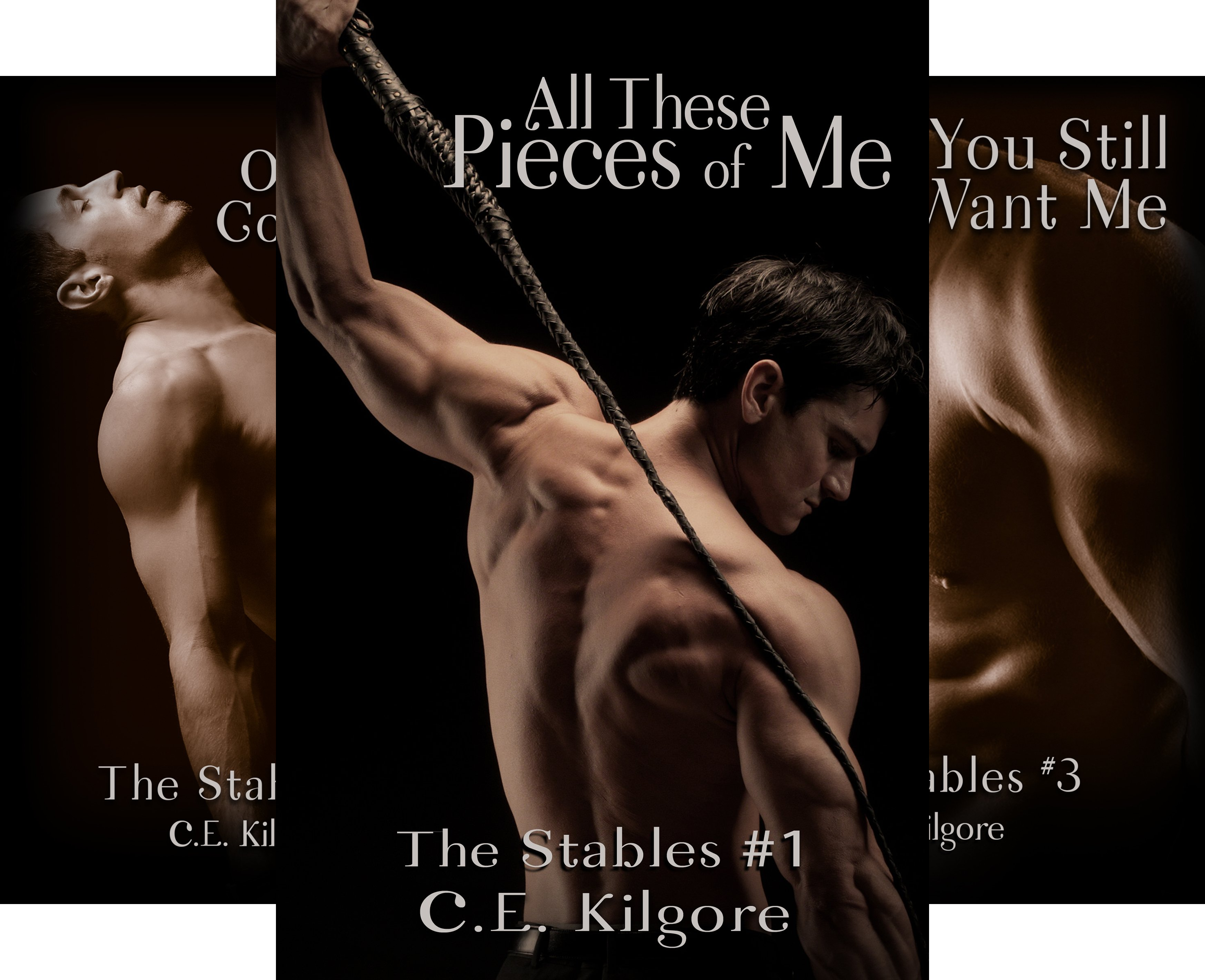 The Stables (6 Book Series)