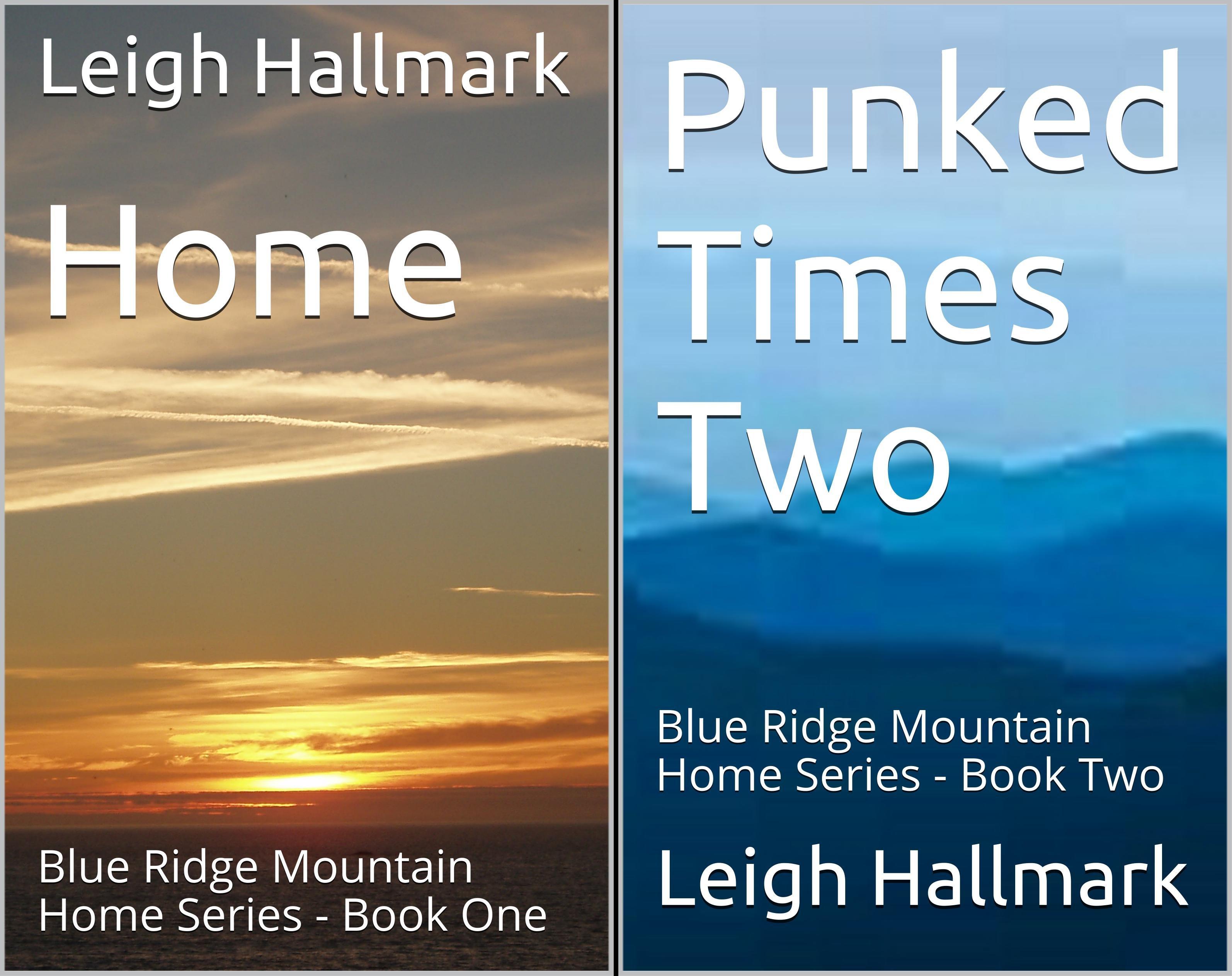 Blue Ridge Mountain Home Series (2 Book Series)