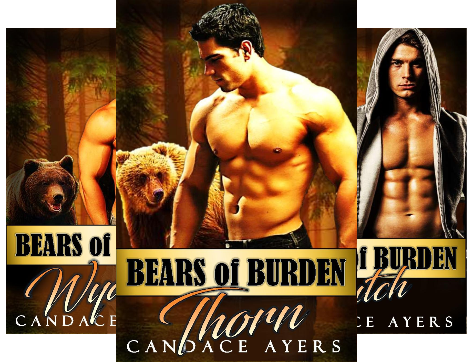Bears of Burden (6 Book Series)