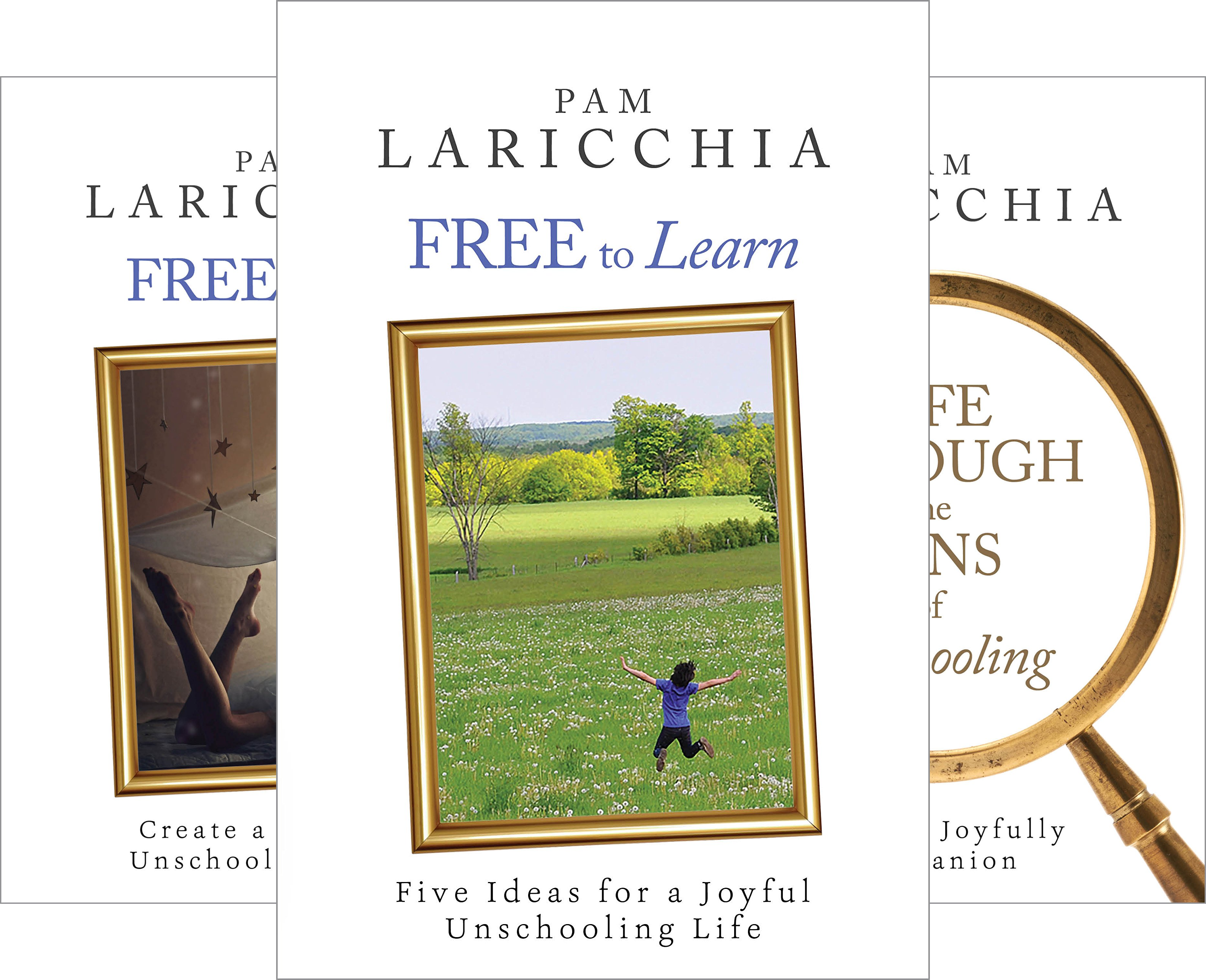 Living Joyfully with Unschooling (3 Book Series)