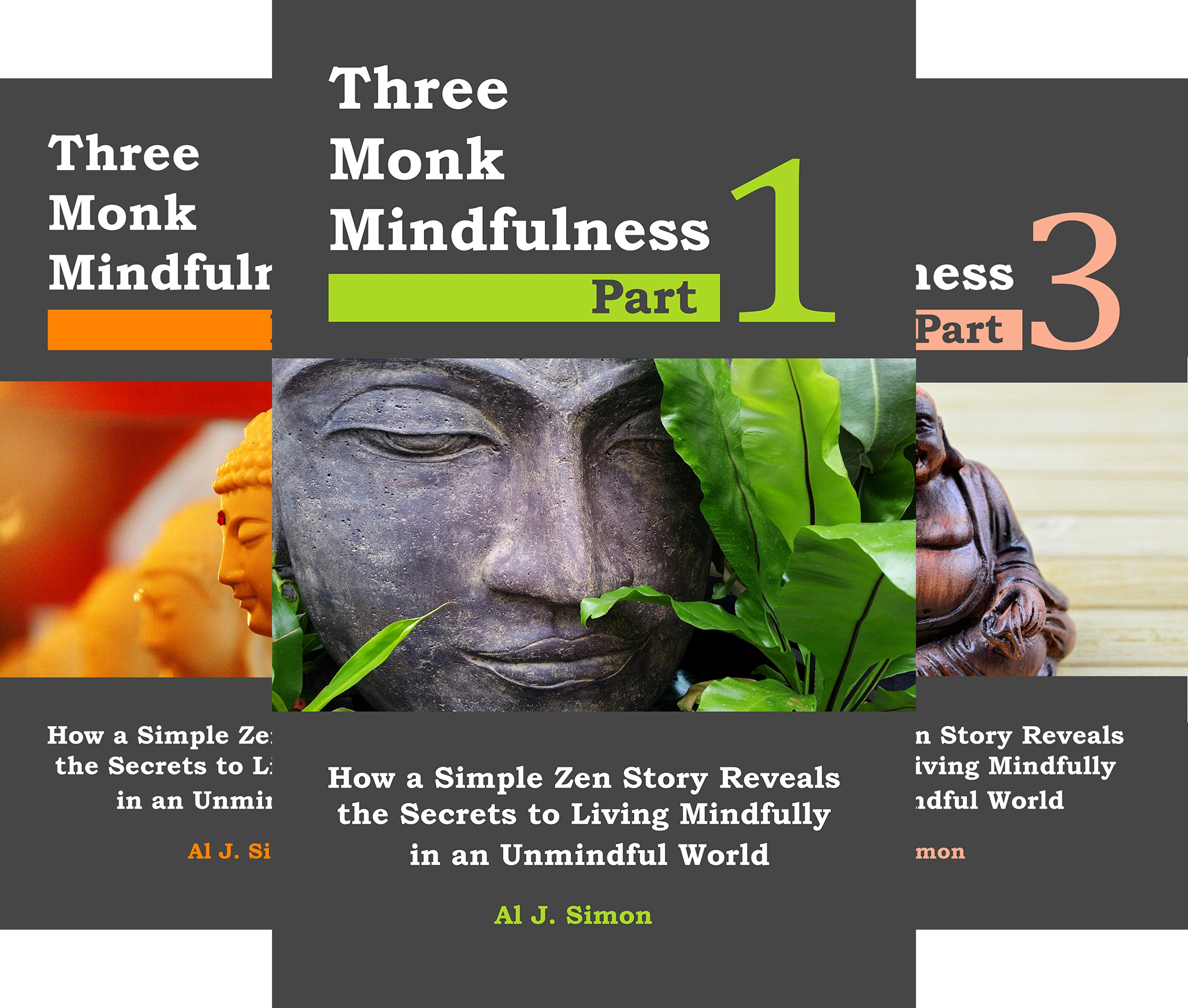 Mindful Masters (3 Book Series)