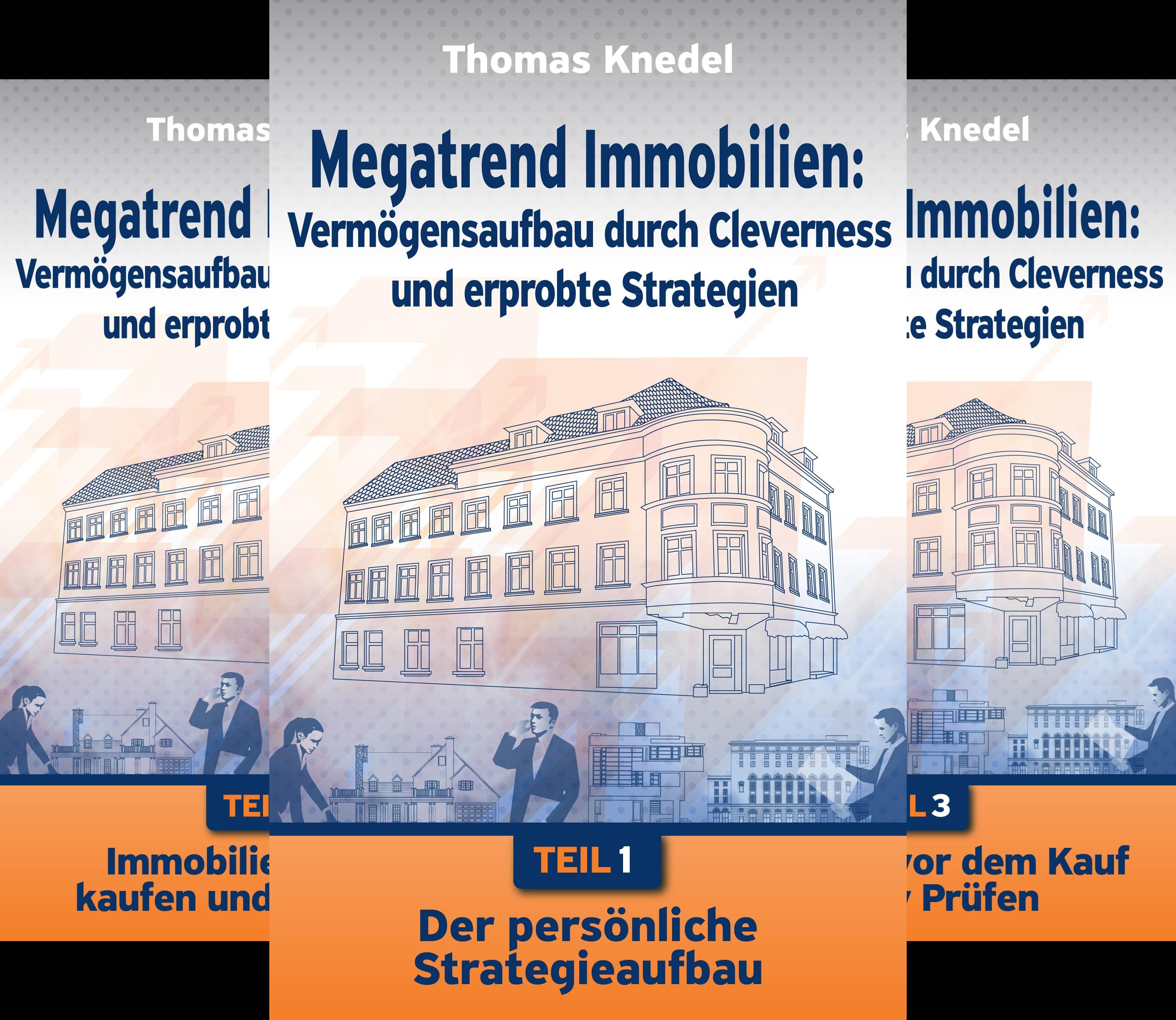 Megatrend Immobilien: Vermögensaufbau Durch Cleverness Und Erprobte Strategien (Reihe in 6 Bänden)