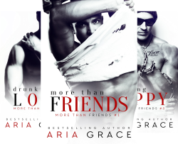 More Than Friends (10 Book Series) by  Aria Grace