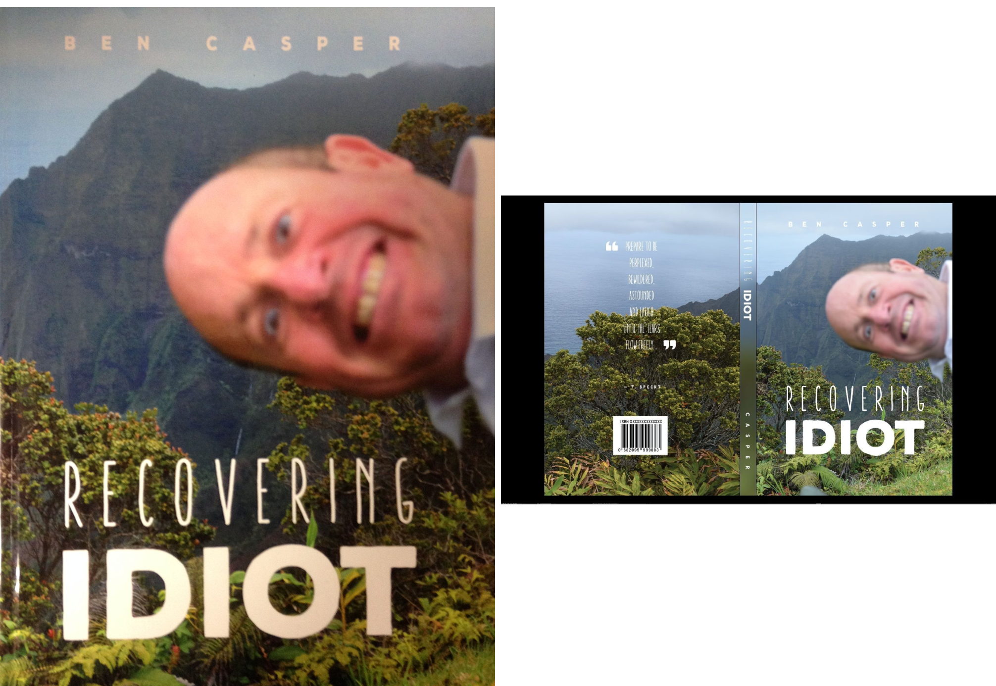 Recovering Idiot (2 Book Series)