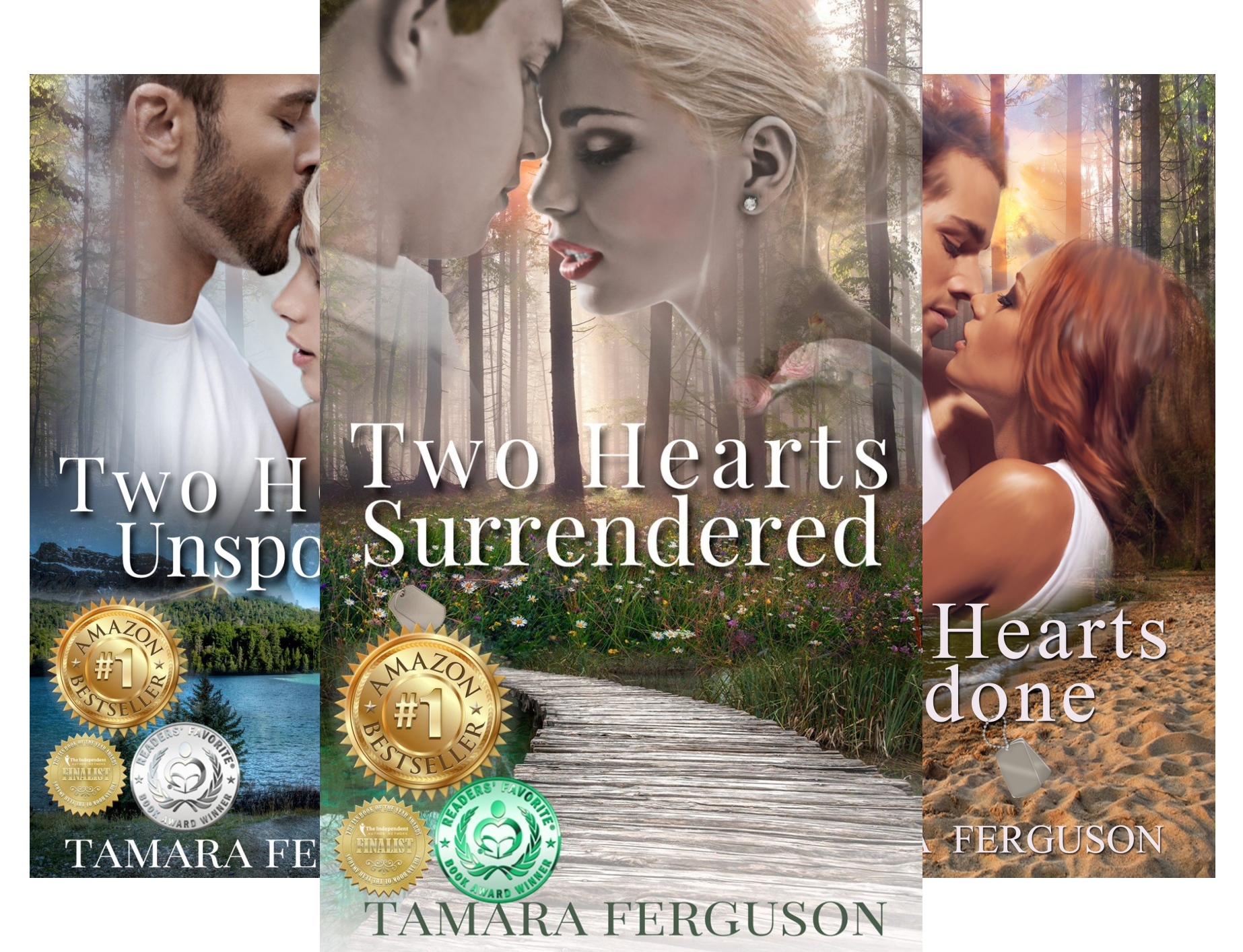 TWO HEARTS WOUNDED WARRIOR ROMANCE (4 Book Series)