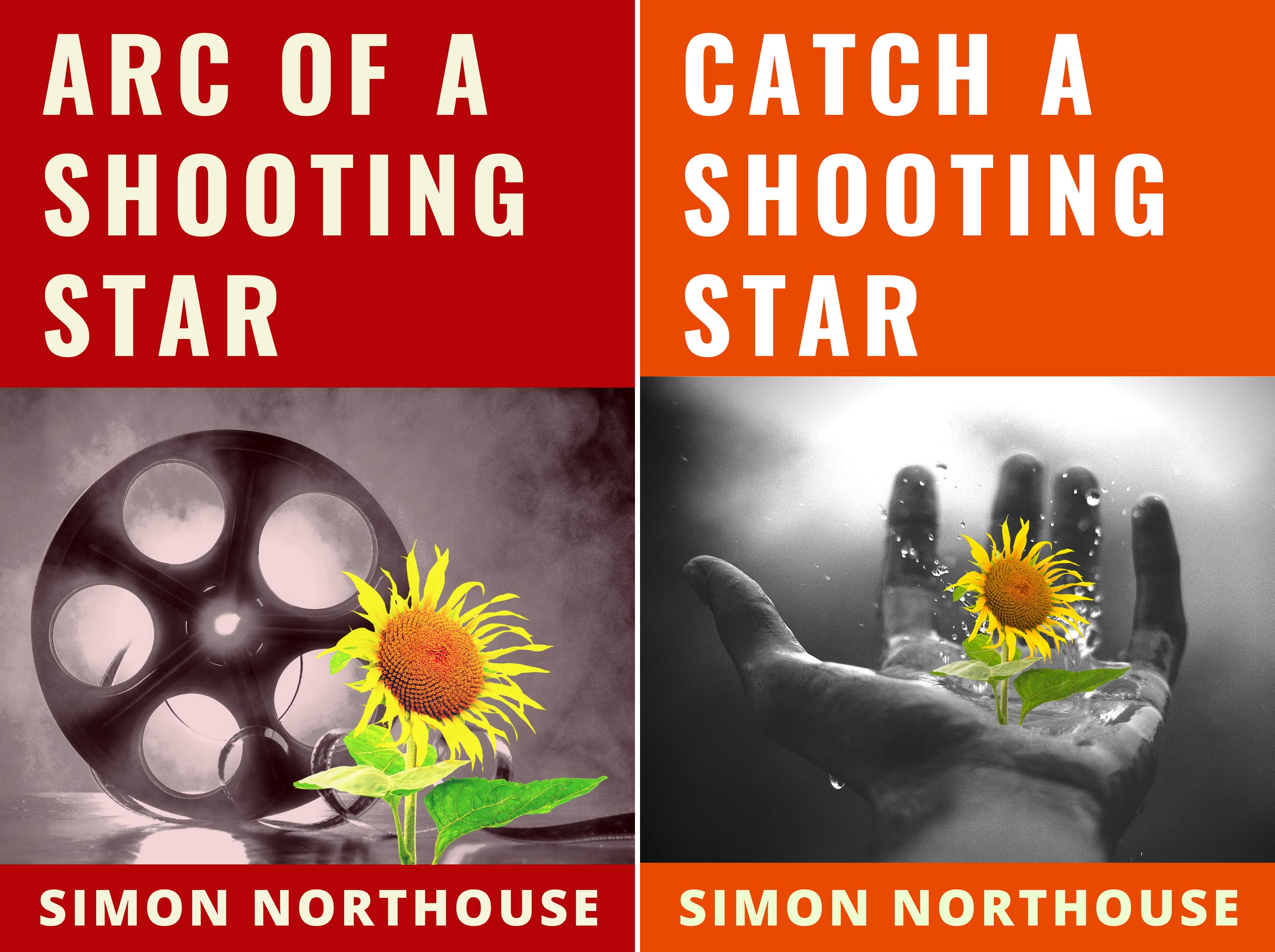 The Shooting Star Series (2 Book Series)