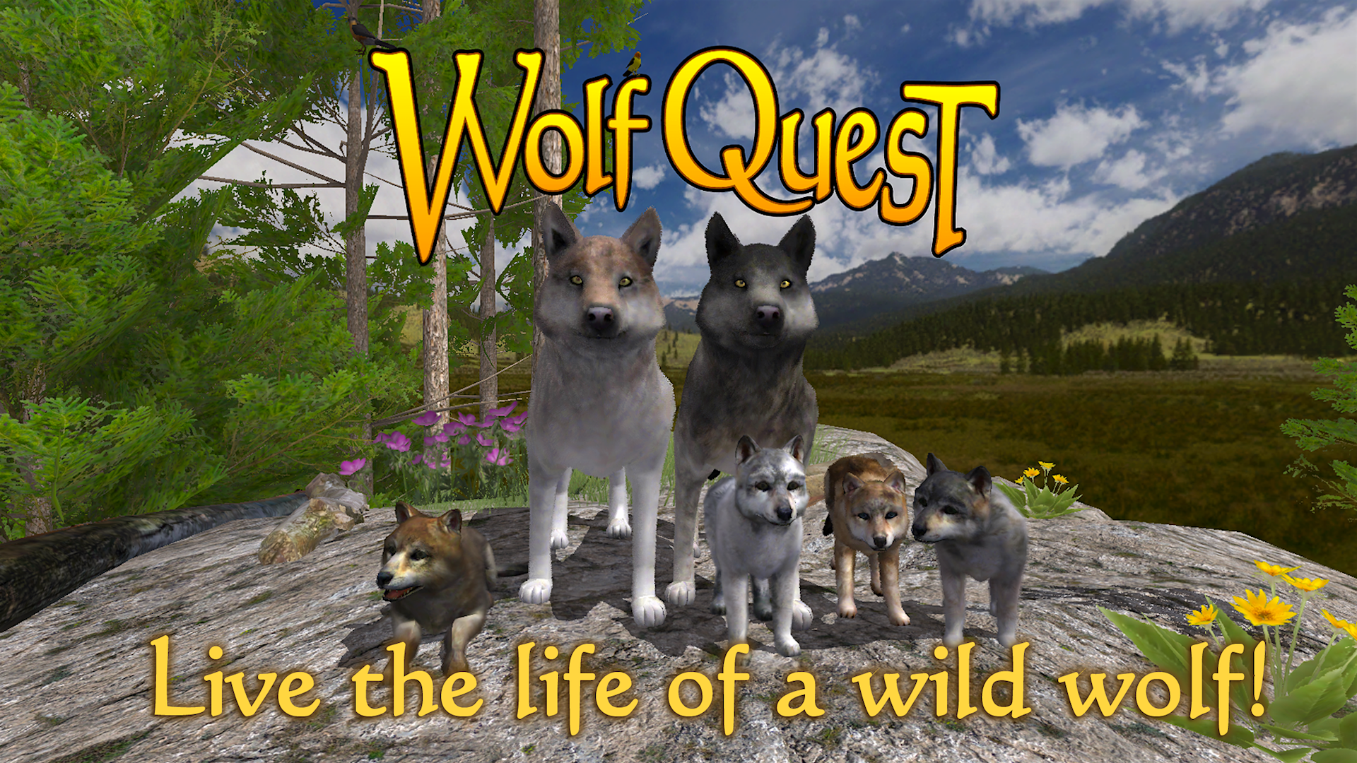 Wolf Quest Free Play