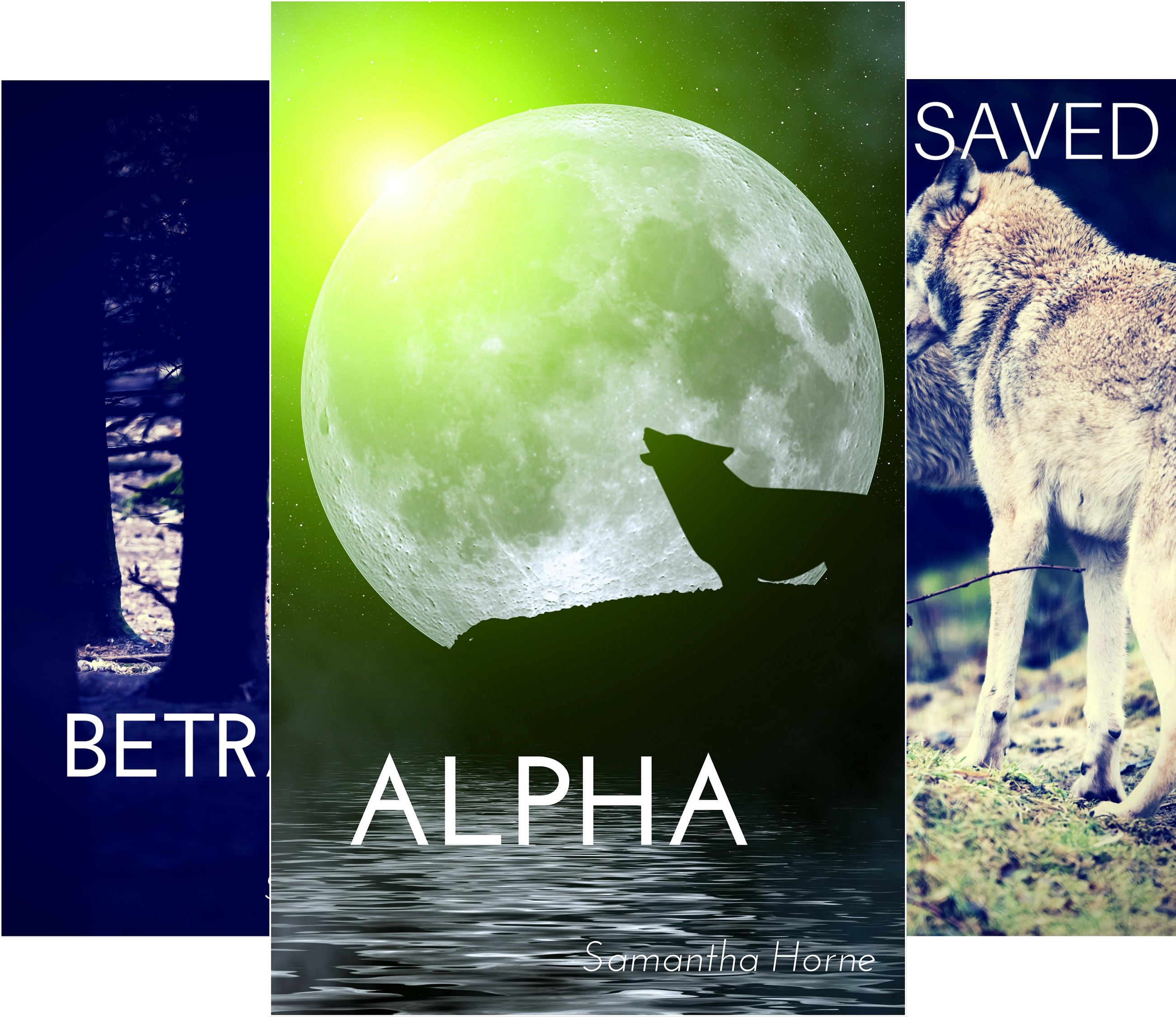 Wolves Creek (3 Book Series)