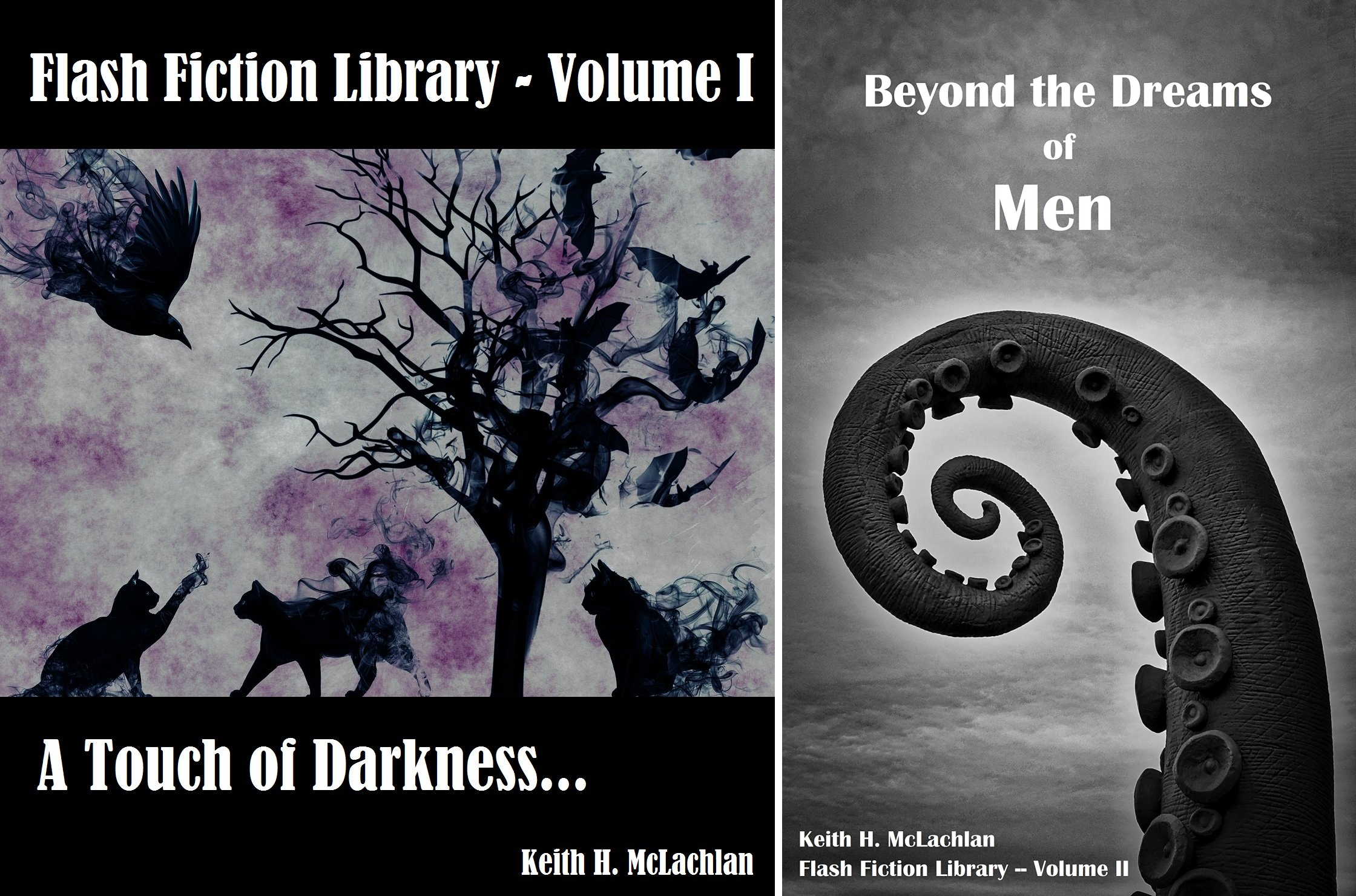 Flash Fiction Library (2 Book Series)