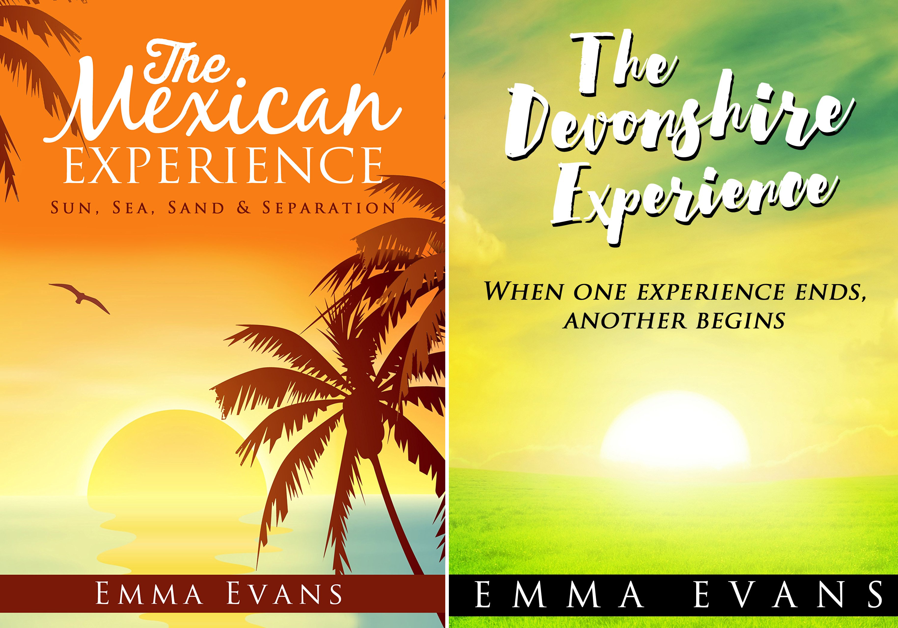 The Experience (2 Book Series)