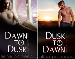Lover's Journey (2 Book Series) by  Alina Popescu
