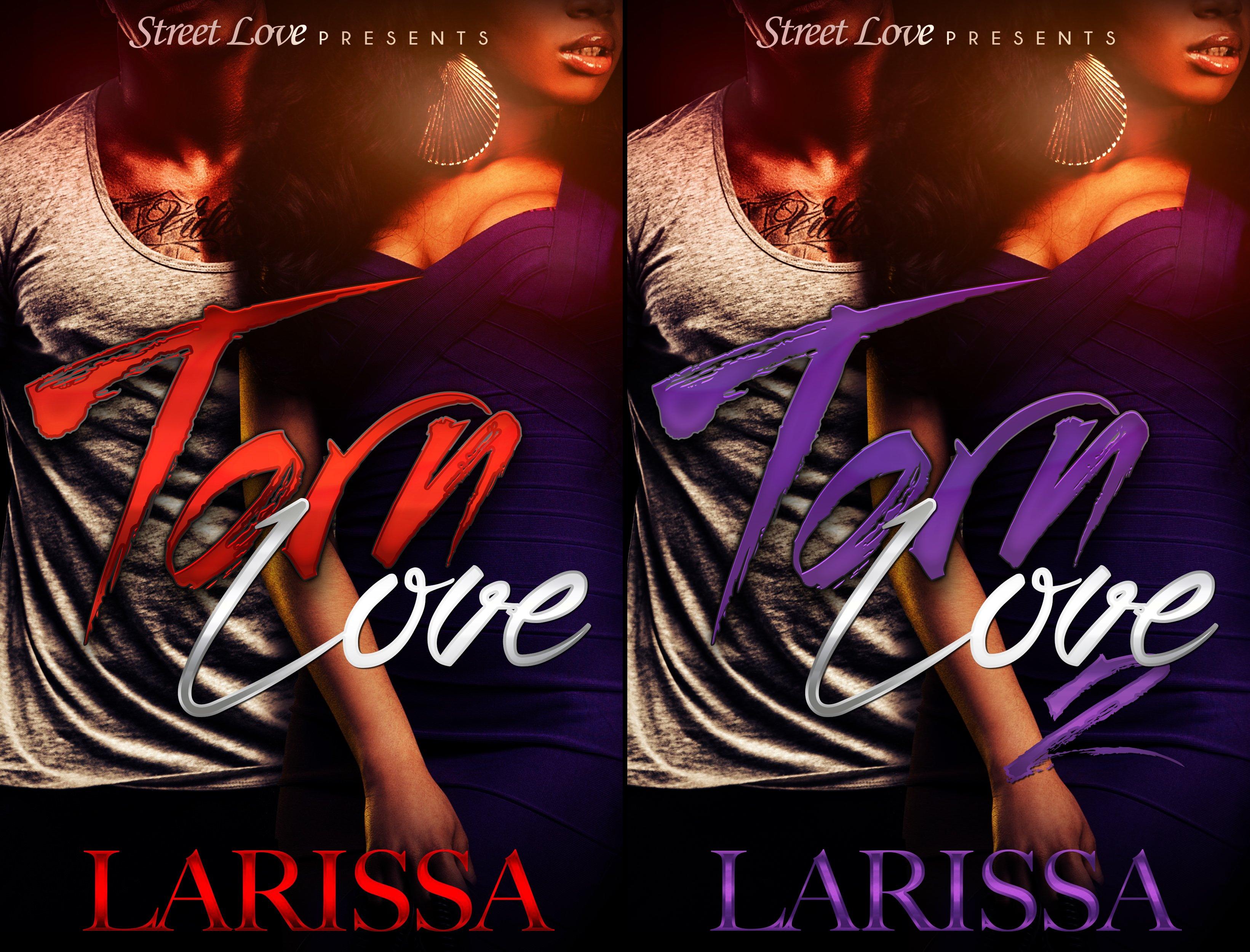 Torn Love (2 Book Series)