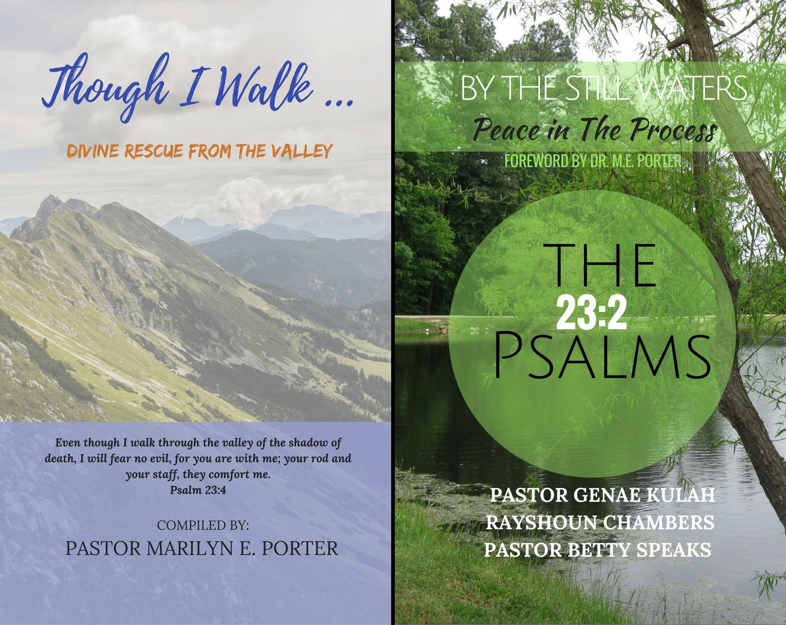 Psalm 23 (2 Book Series)
