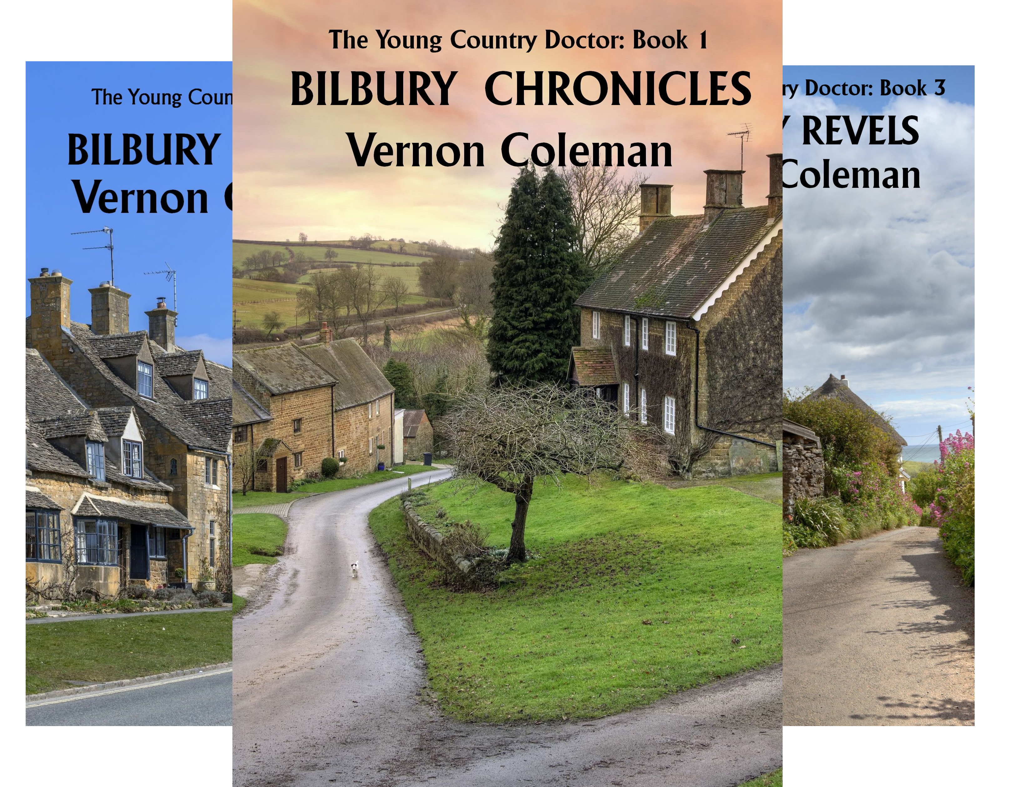The Young Country Doctor (10 Book Series)